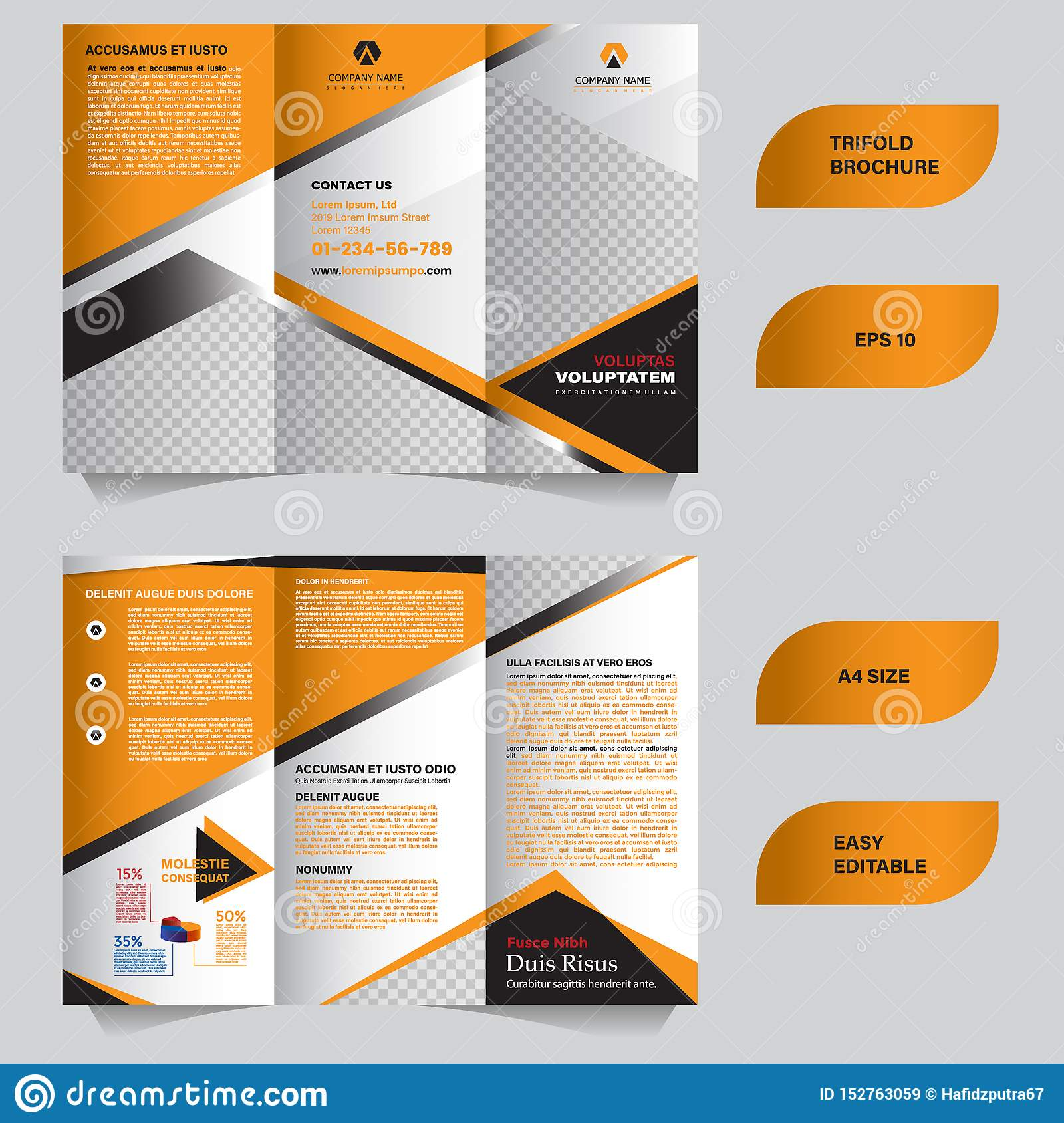 Modern trifold brochure template with flat and elegant concept