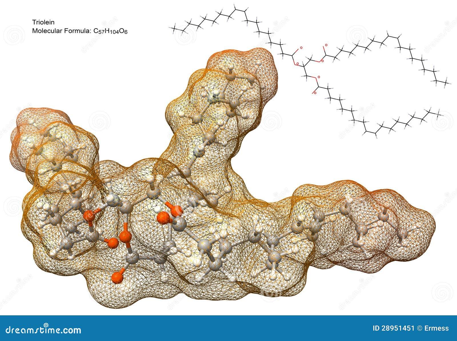 Triglyceride Molecule Structure Triglyceride Model Tri...
