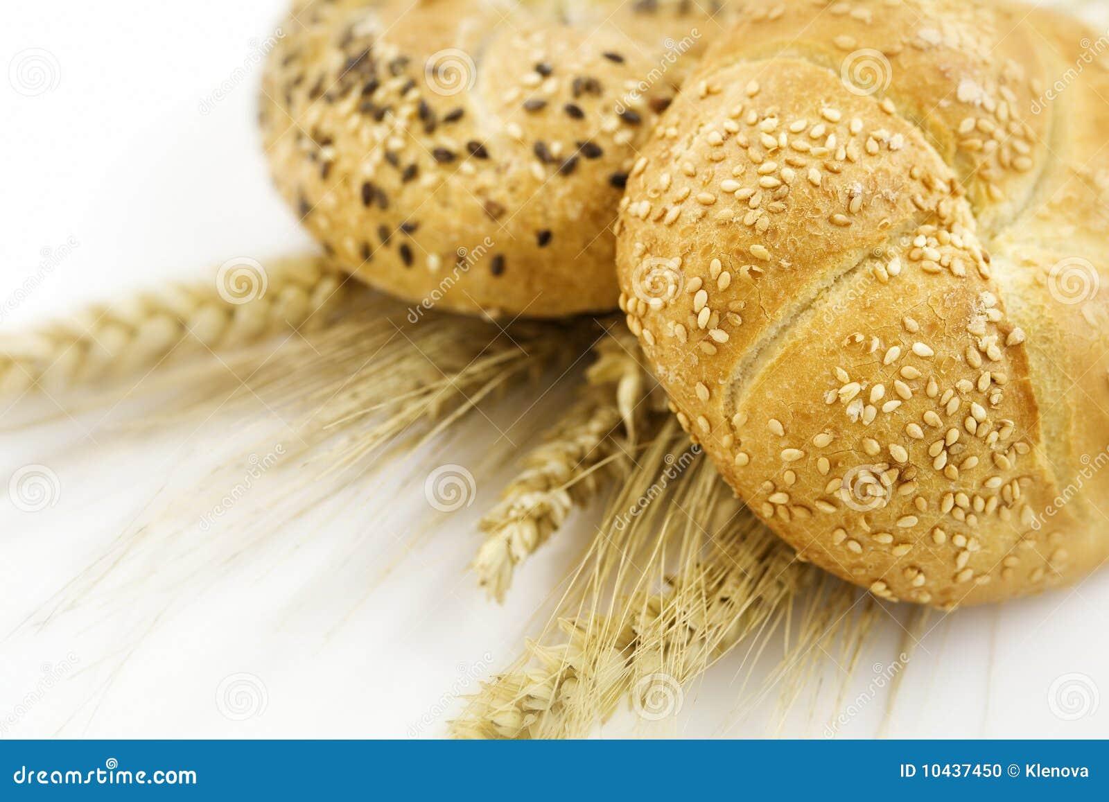 Trigo e pão