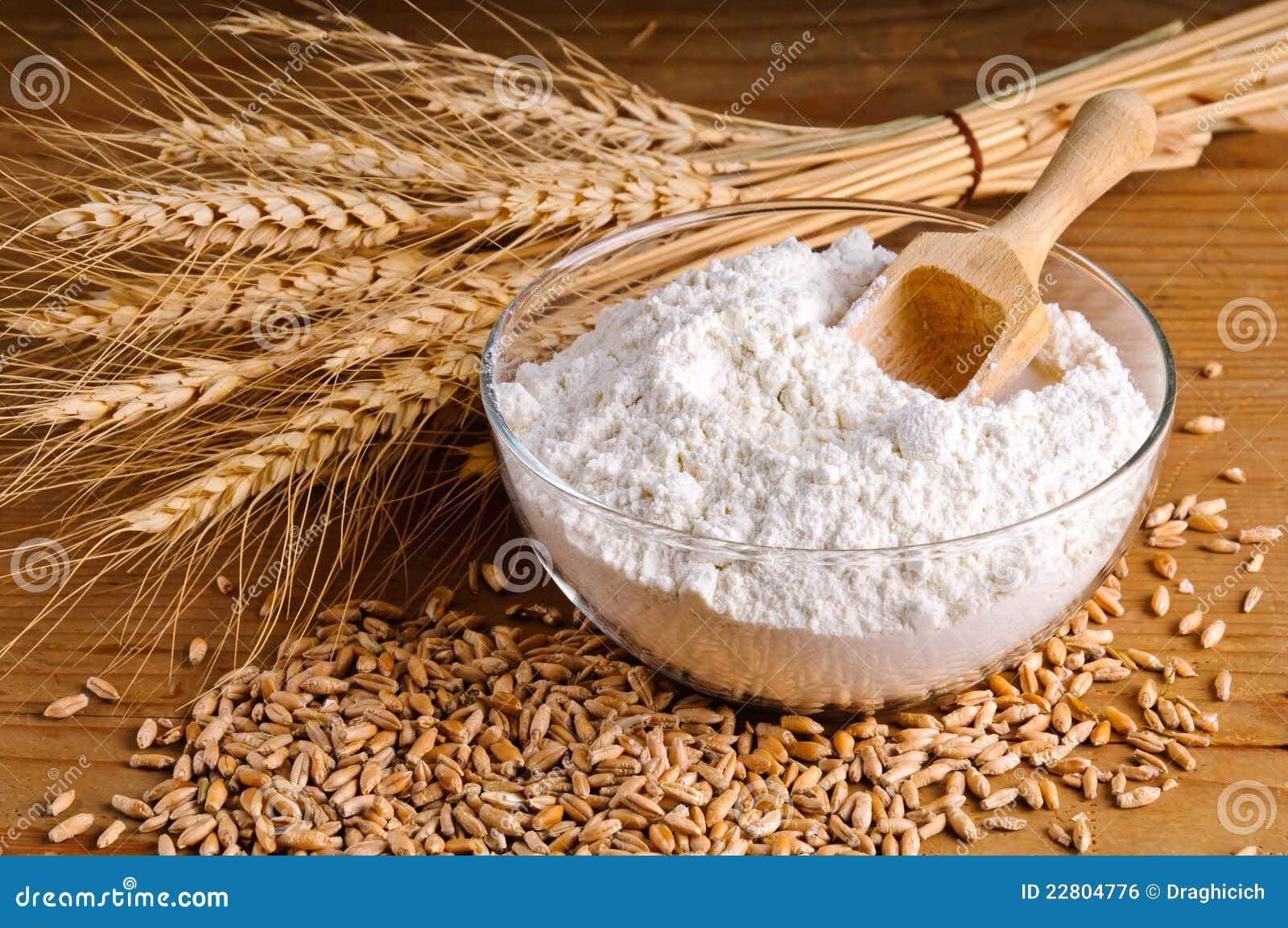 Trigo, grão e farinha