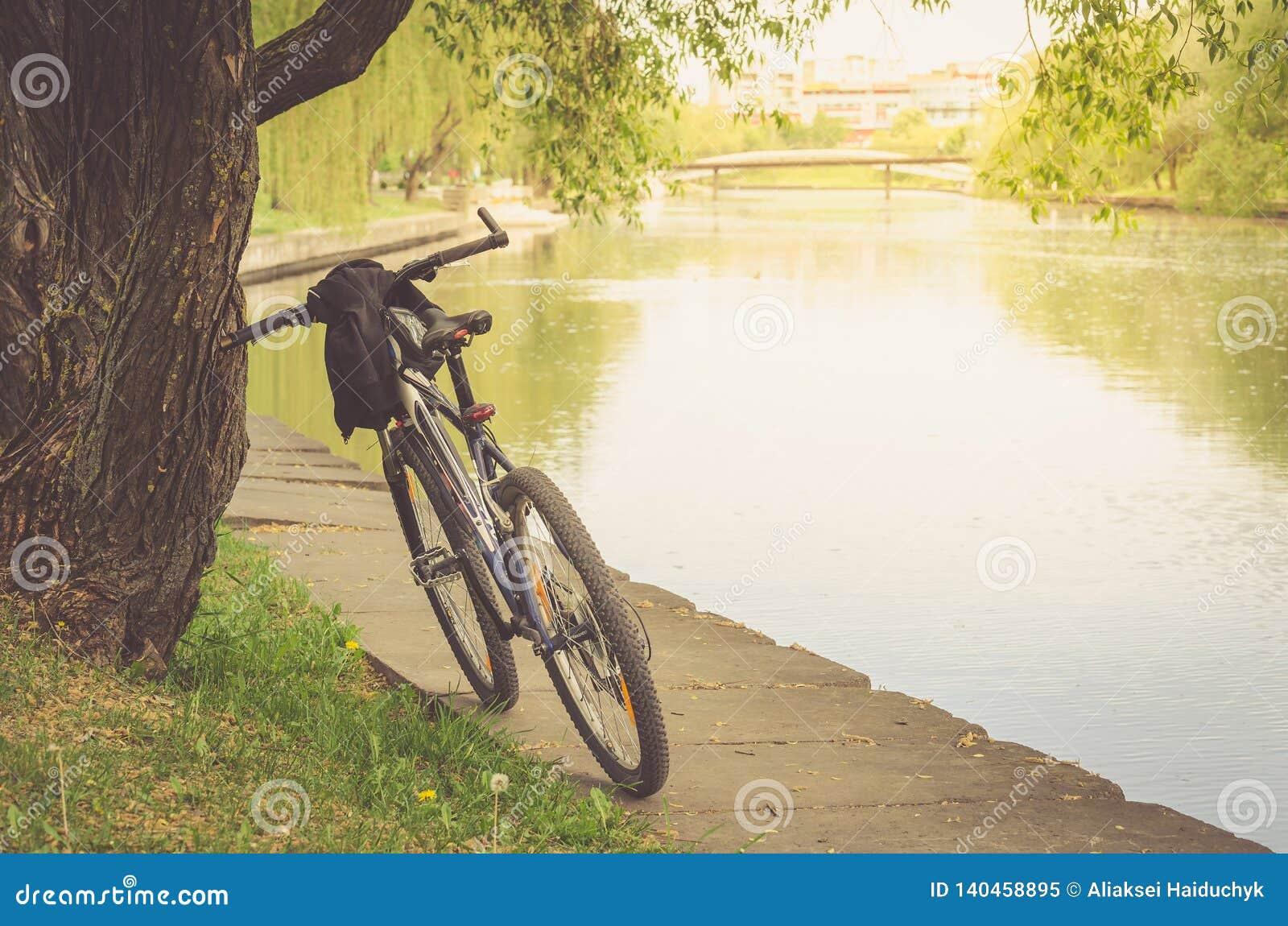 Trilha da bicicleta no parque perto do rio/caminhada pela bicicleta perto do rio