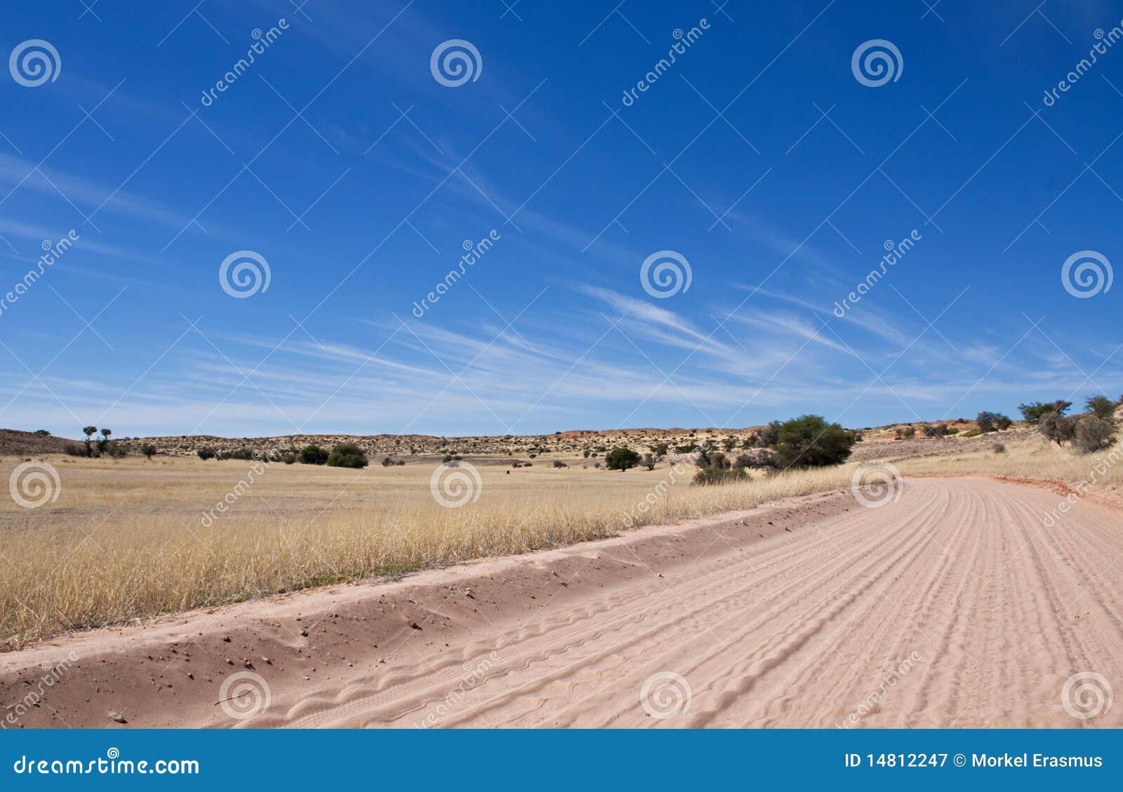 Trilha de sujeira no deserto de Kalahari
