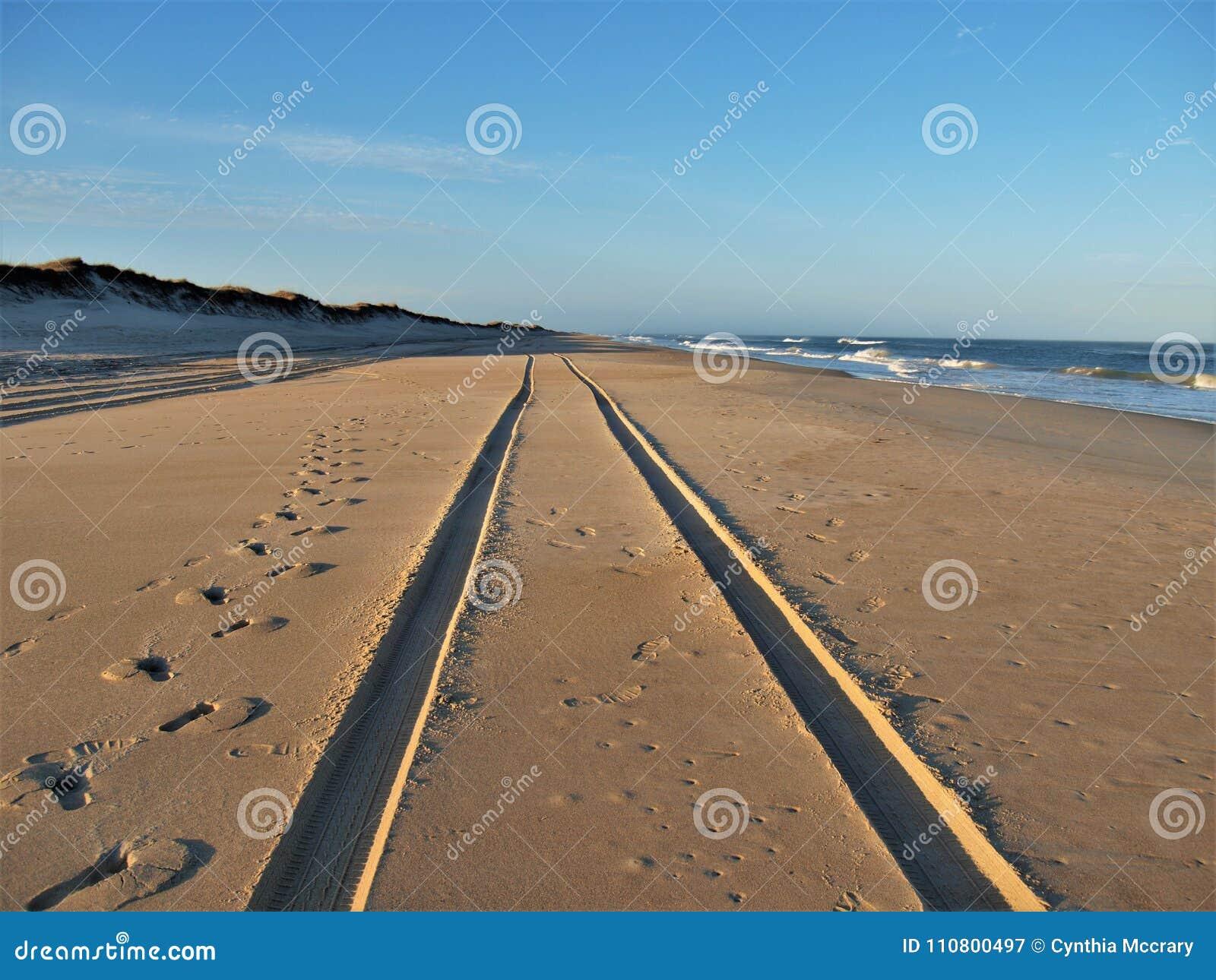 Trilhas na areia na ilha de Hatteras
