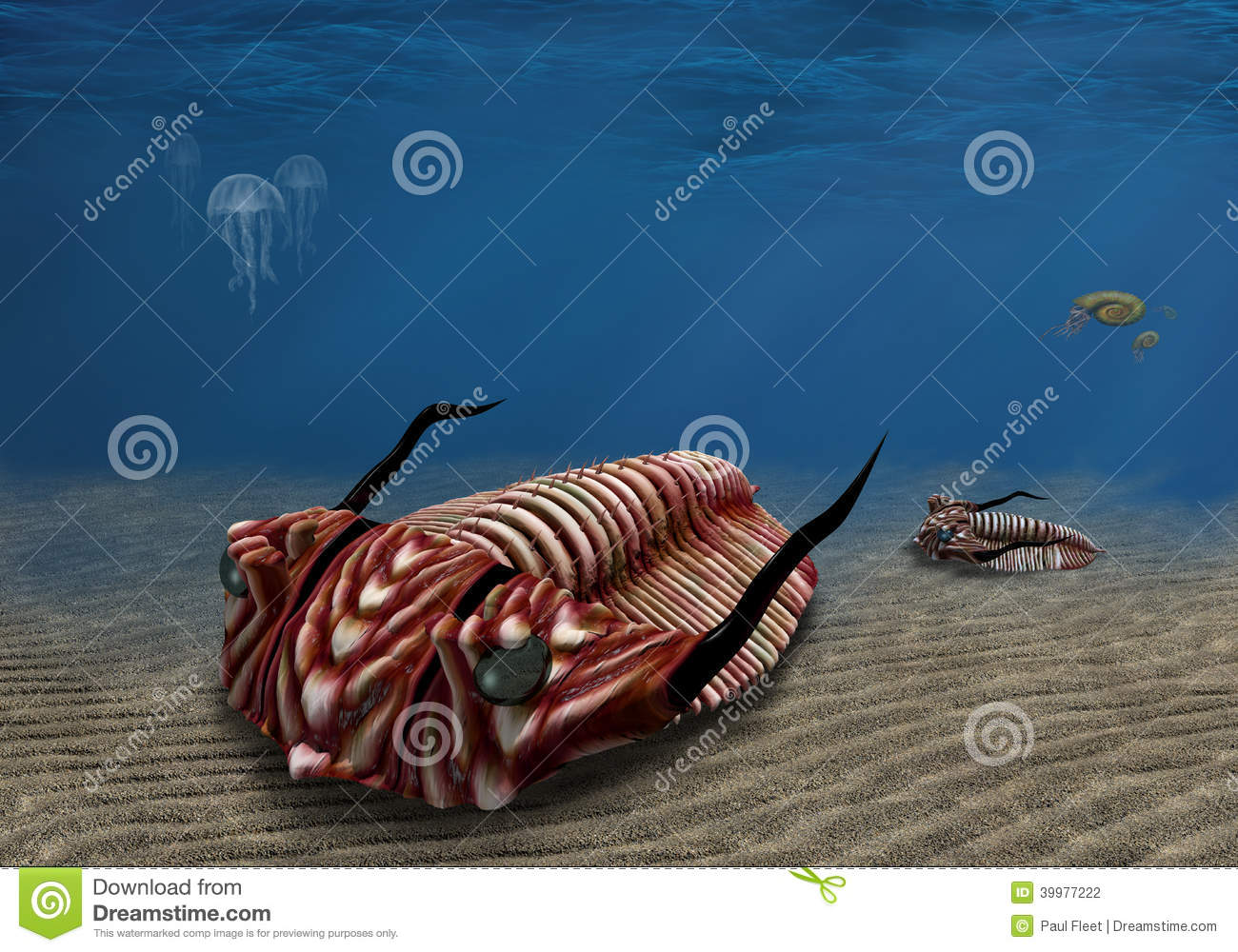Prehistoric trilobite scavenging on the ocean floor Trilobite Illustration