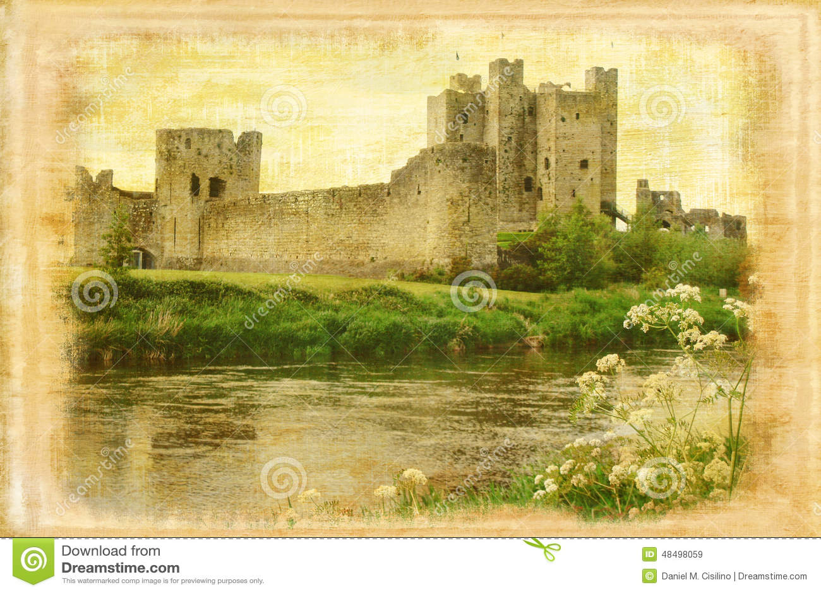 Trim castle. Trim . Ireland