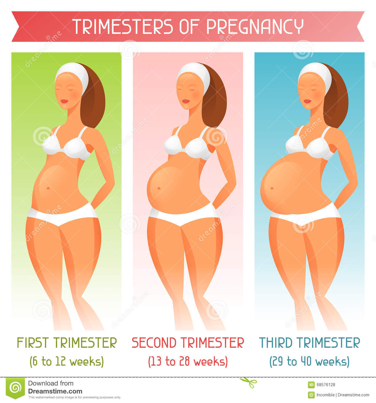 3 Trimesters Of Pregnancy Royalty Free Stock Photos - Image: 4165168