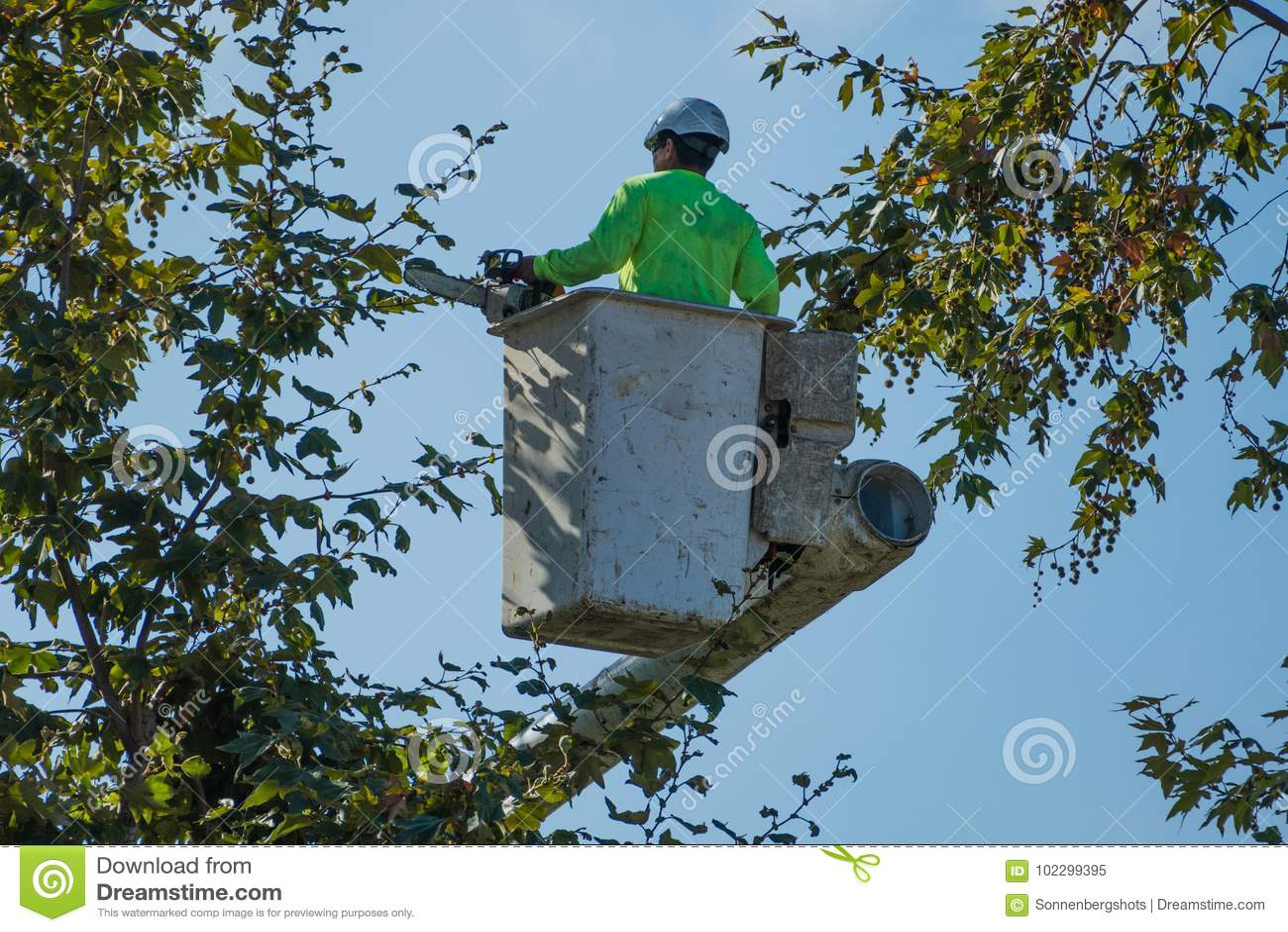 Trimmer d arbre dans le seau tenant une tronçonneuse