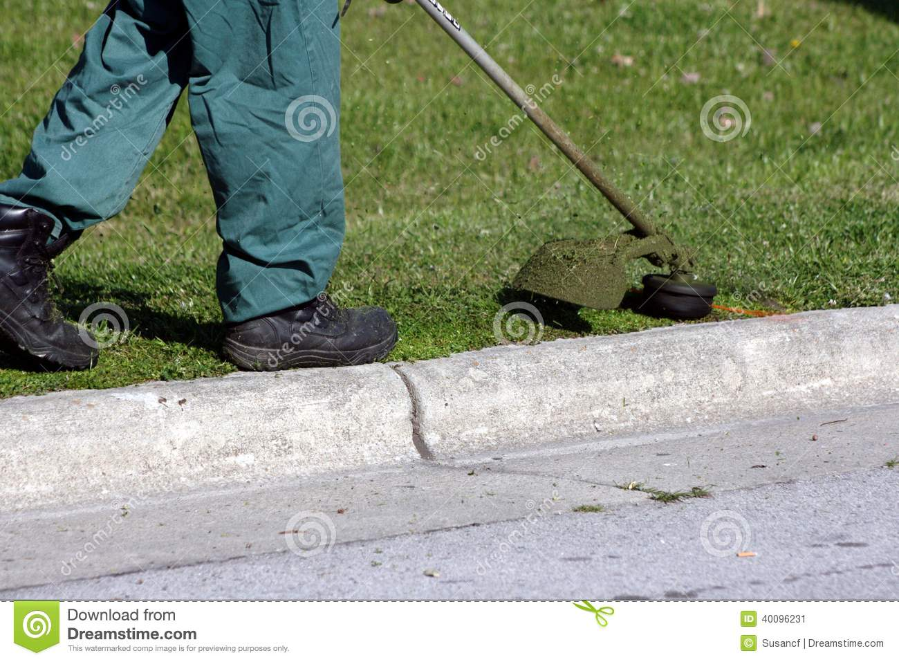Image Result For Lawn Doctor Prices