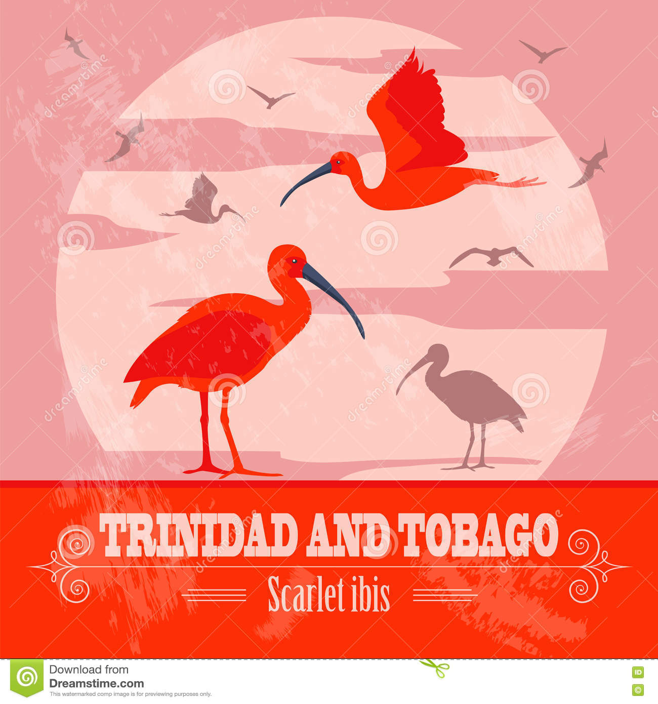 Trinidad And Tobago National Symbols Scarlet Red Ibis Retro
