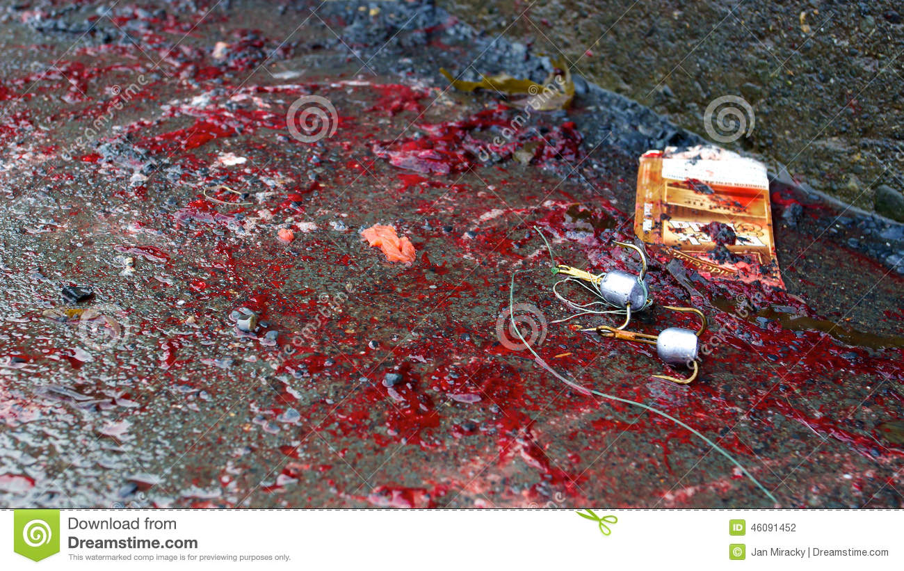Triple Hooks Used For Fishing Laying In Blood Stock Photo ...