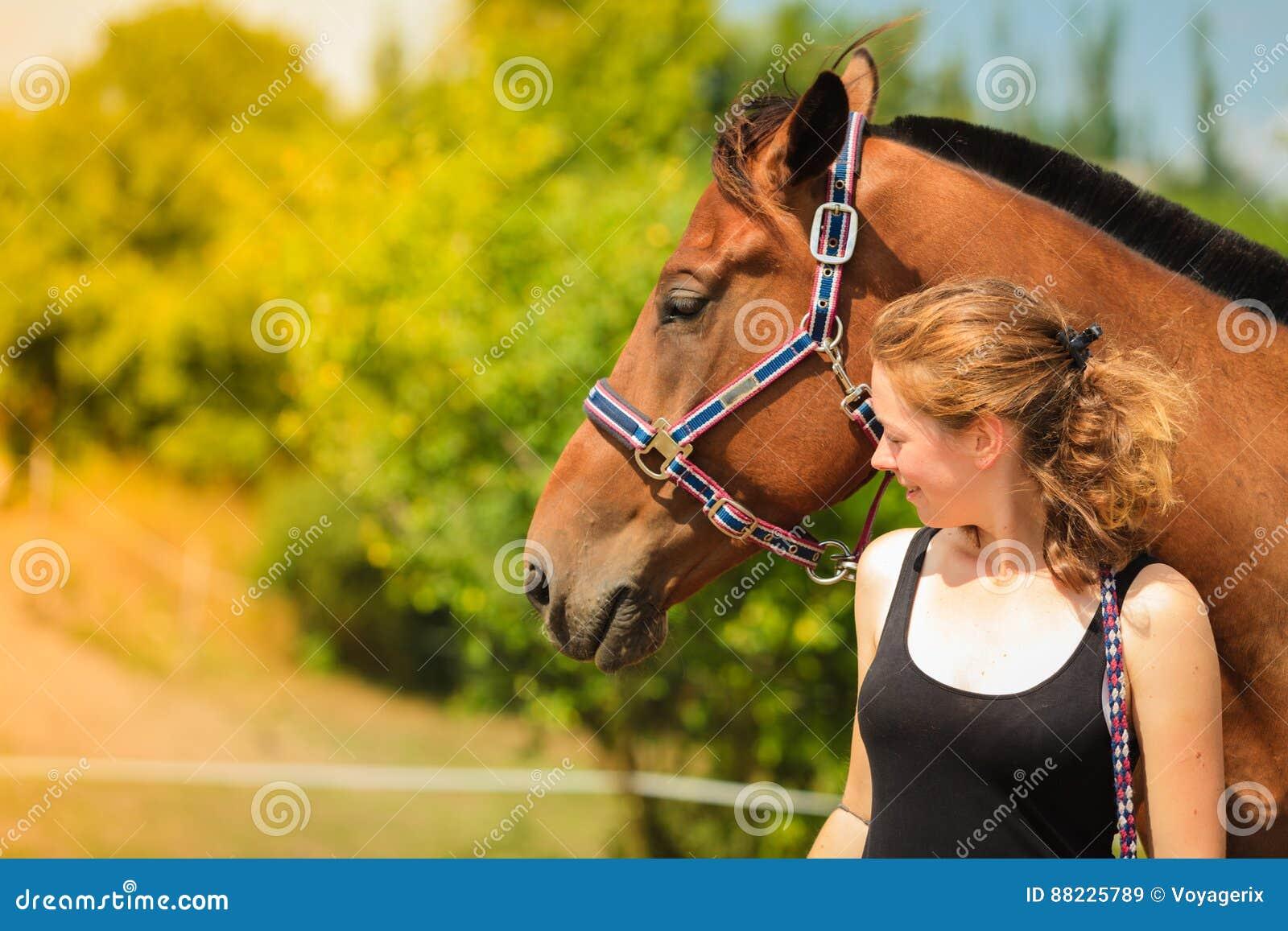 Trocas de carícias da moça do jóquei e aperto do cavalo marrom