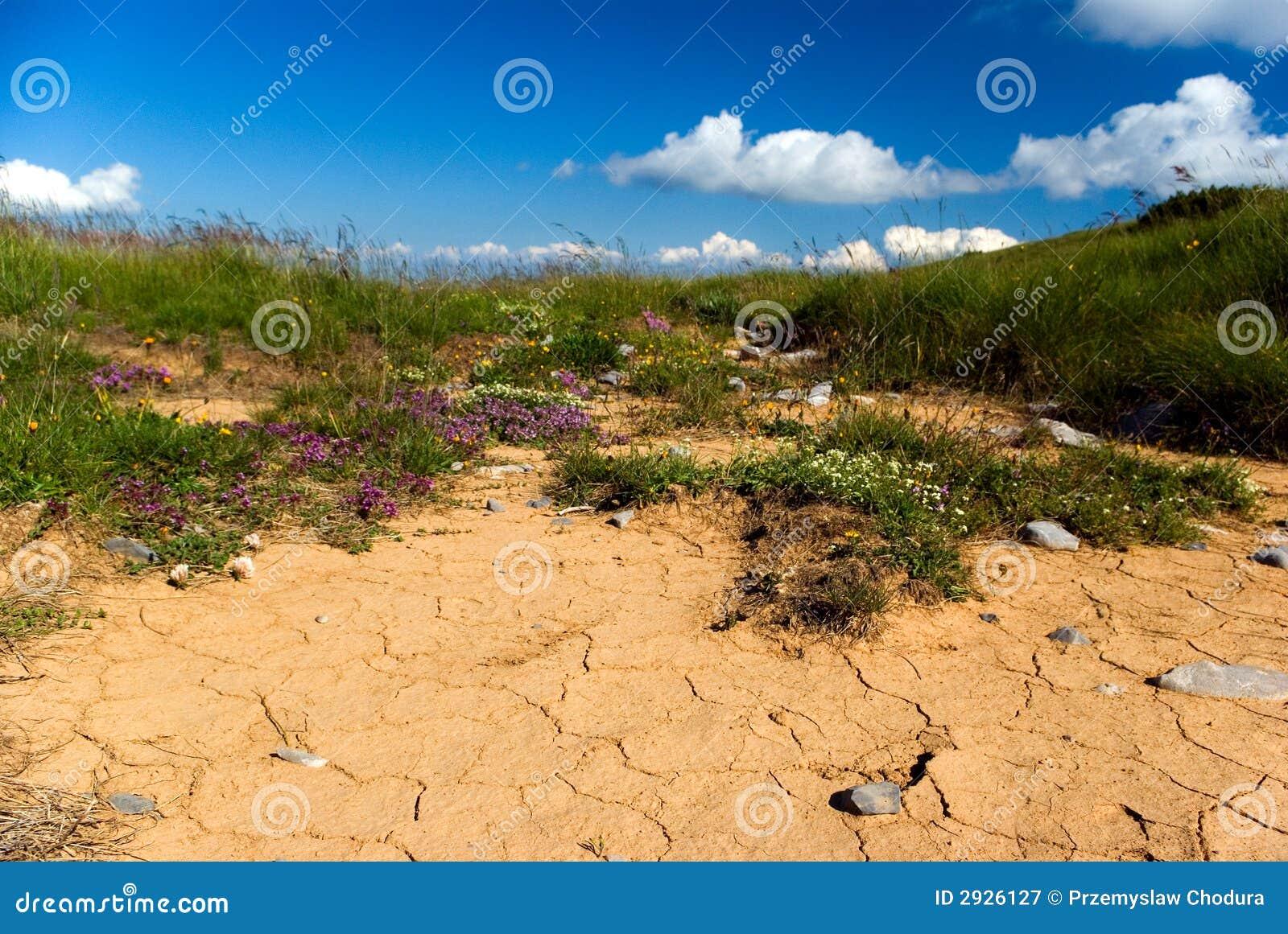 Trockener boden lizenzfreie stockfotografie bild 2926127 for Boden desktop