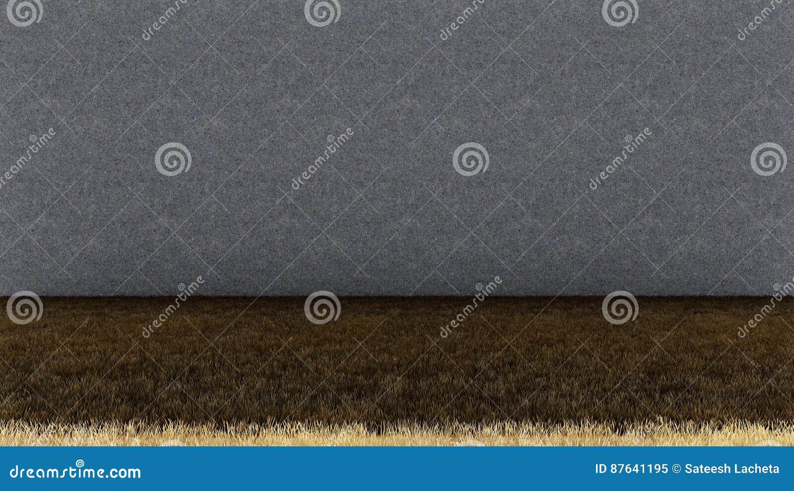 Trockenes Gras-Boden und Betonmauer