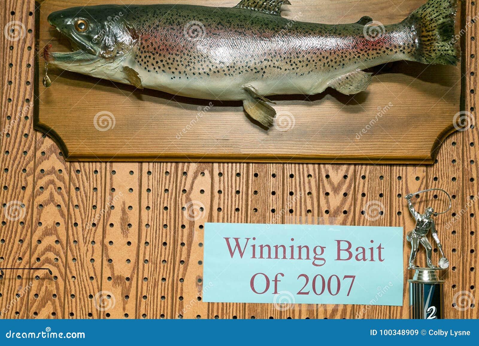 Trofeo montado de los pescados del cebo que gana 2007