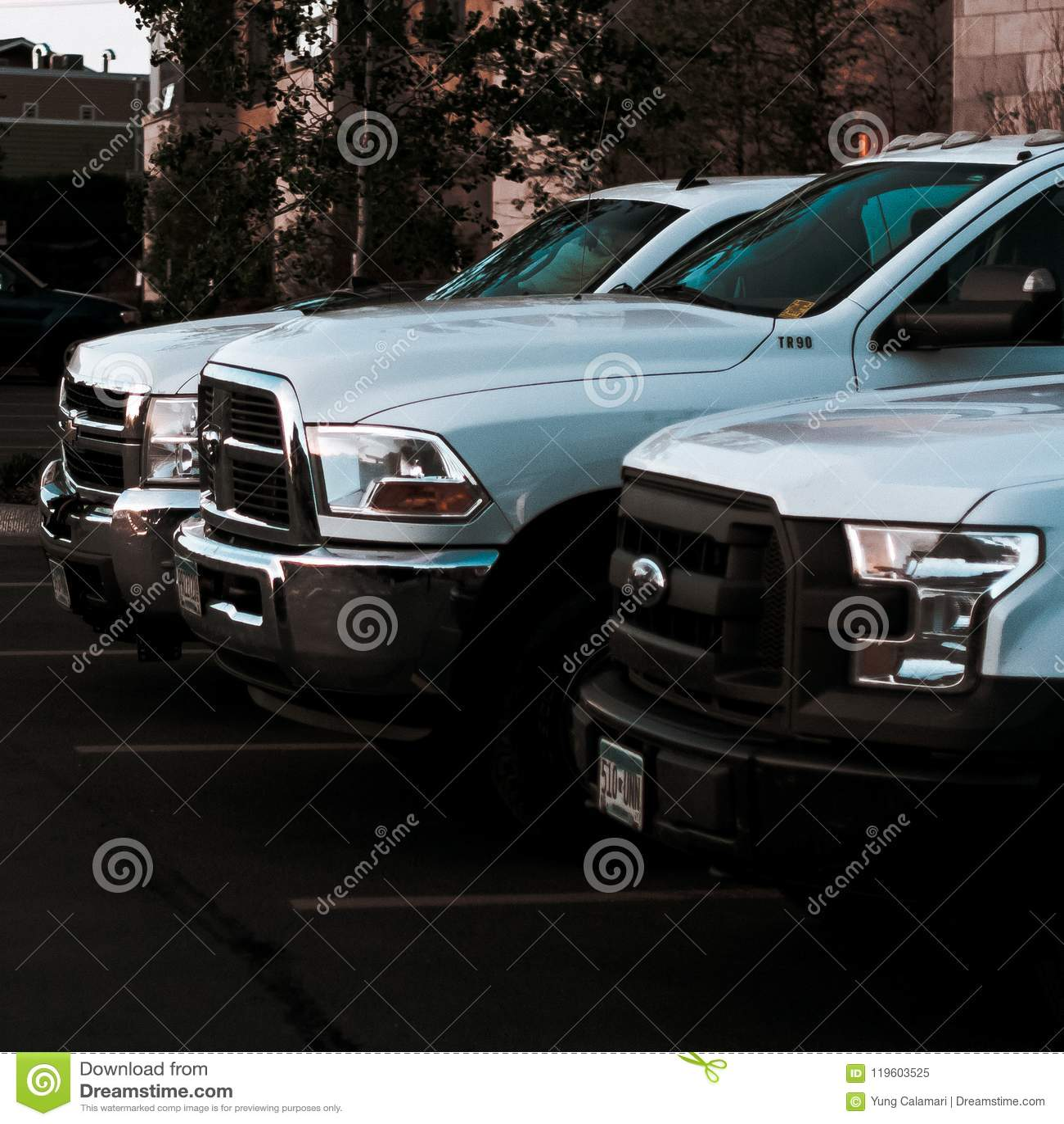 Trois camions blancs de travail dans une rangée