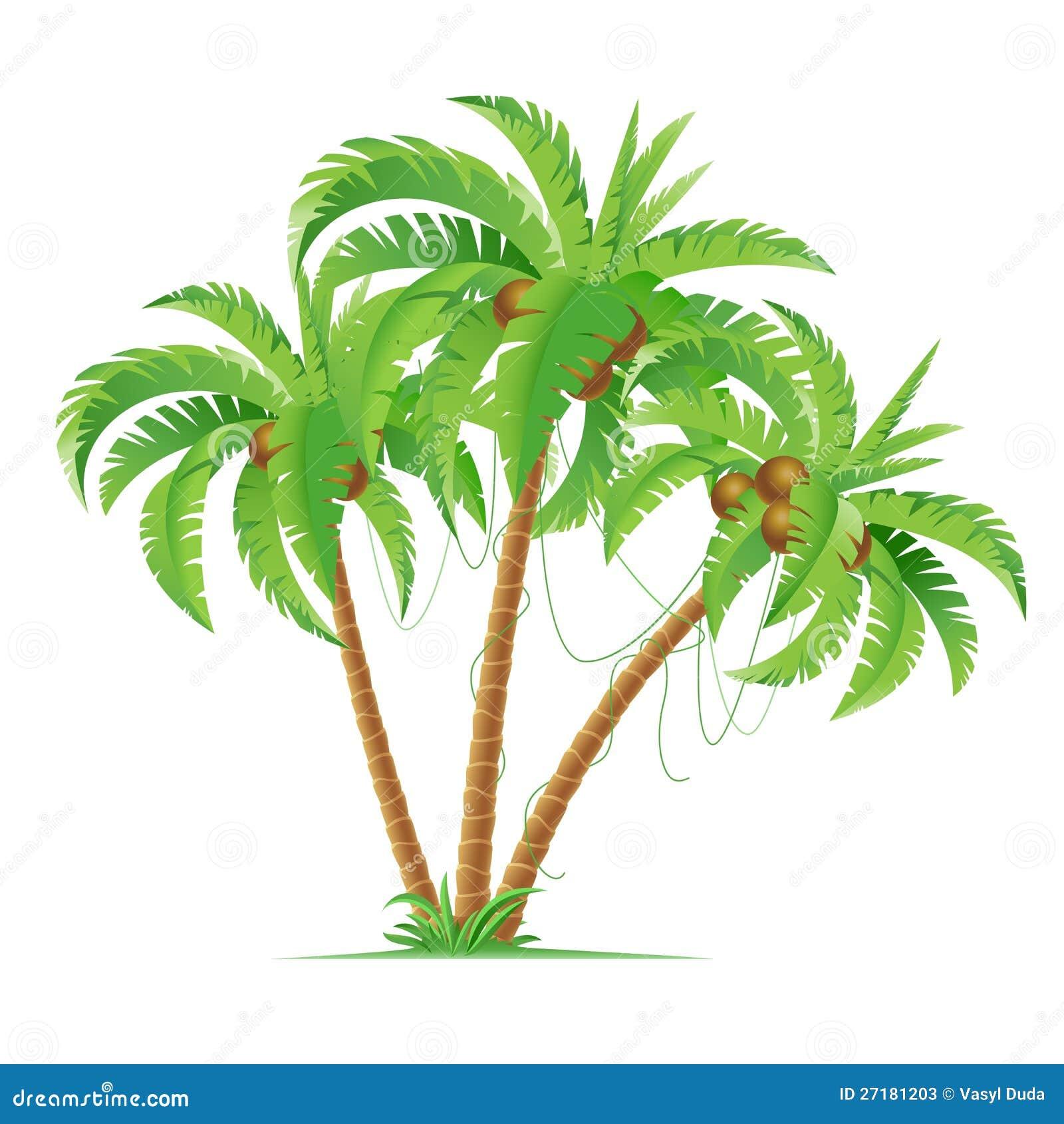 Trois cocotiers illustration de vecteur illustration du - Palmier cocotier ...