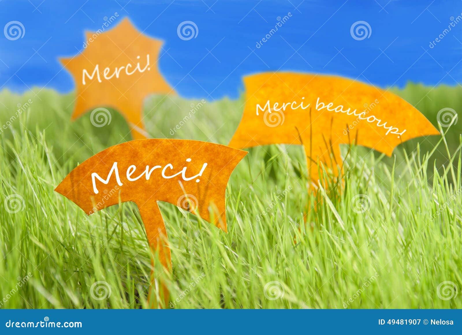 Trois labels avec le Français Merci que les moyens remercient vous et le ciel bleu