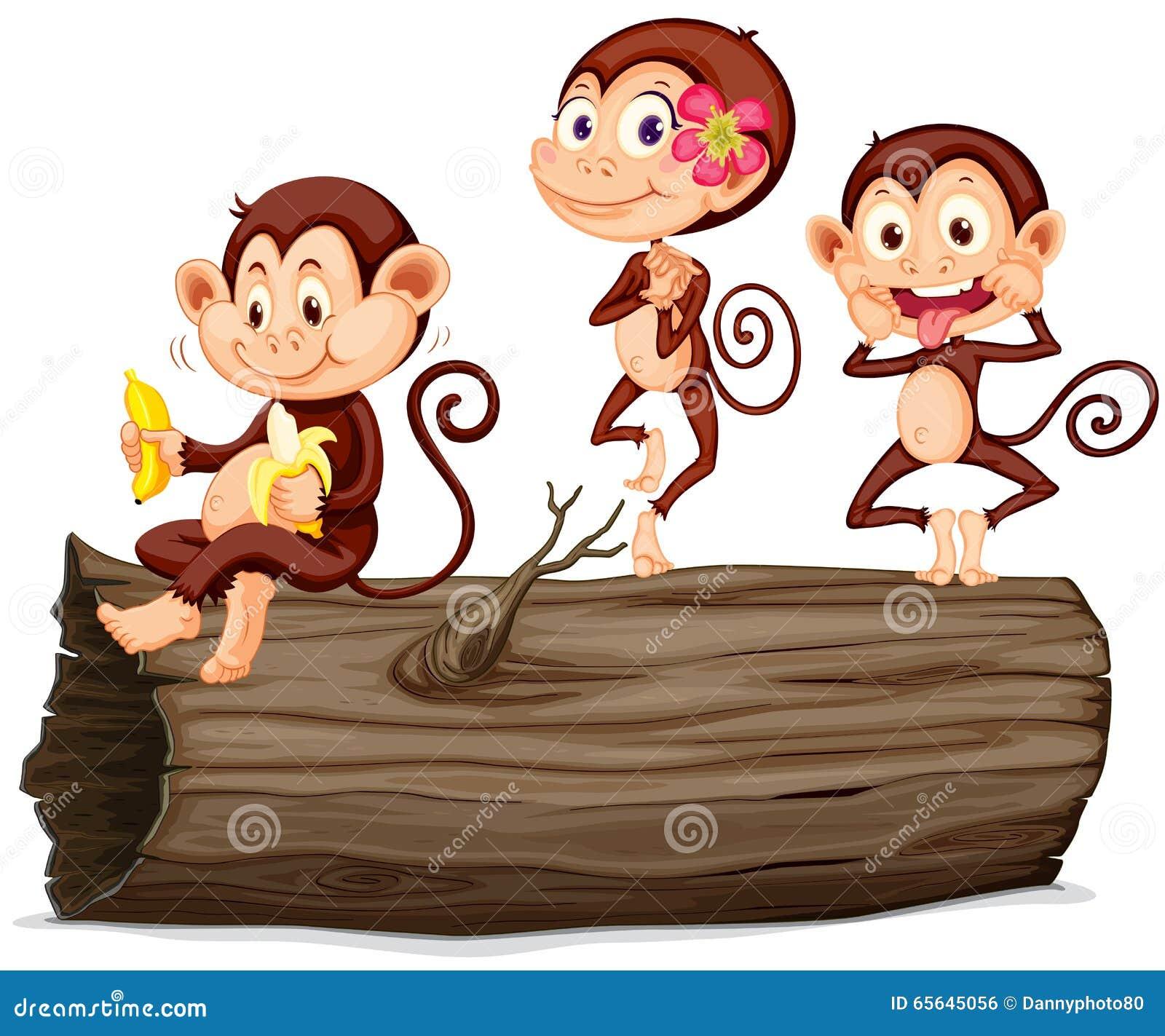 Trois singes sur le rondin