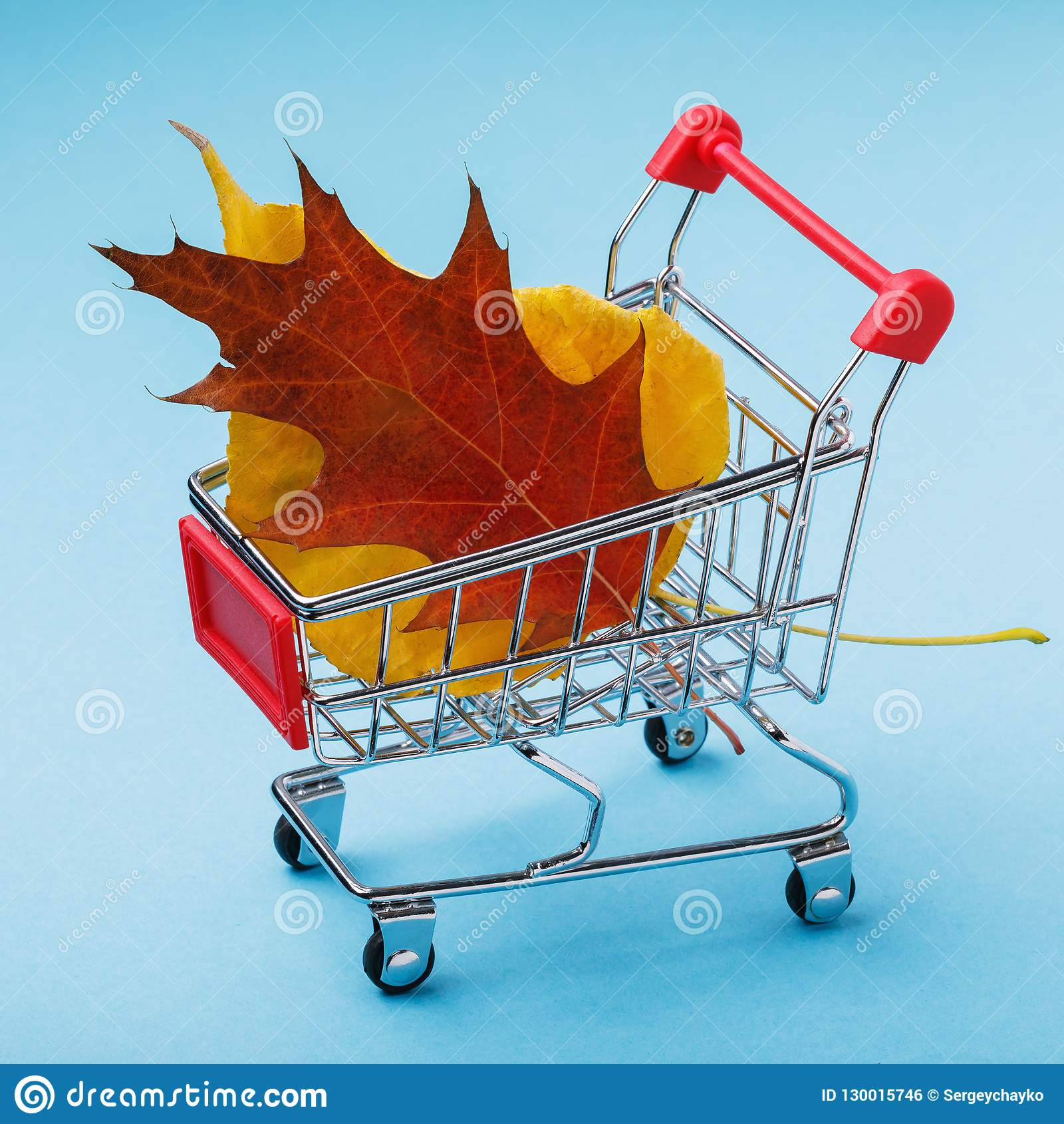Trolley with leaves on blue background