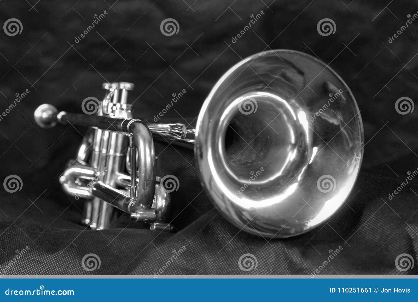 Trombeta de prata em preto & em branco