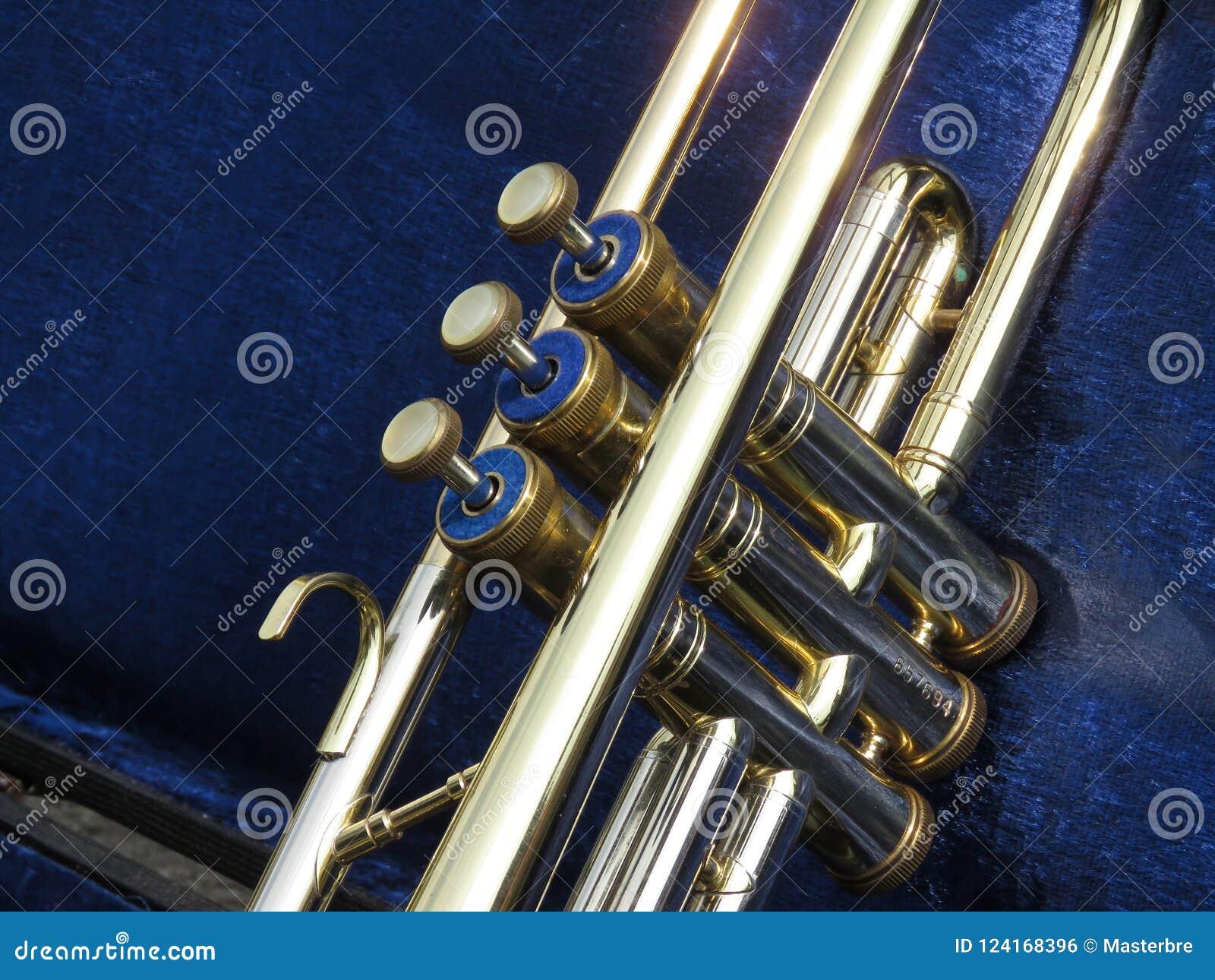 Trompetkleppen