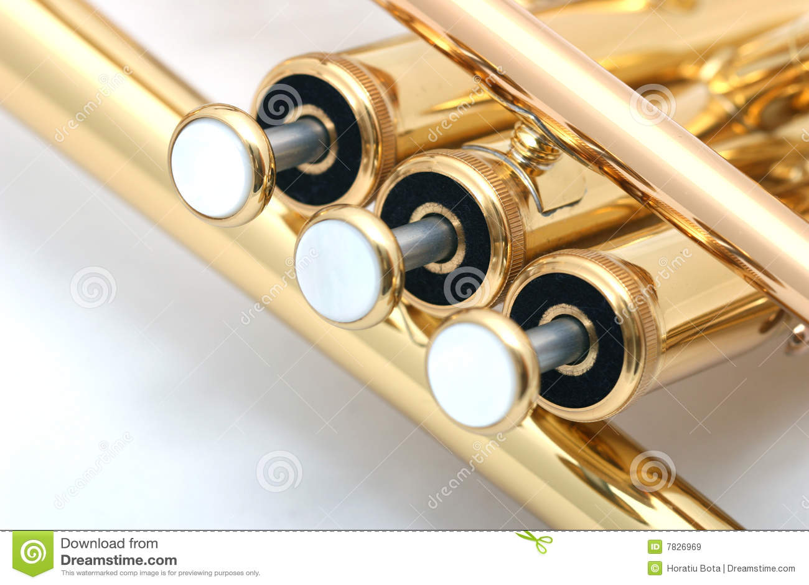 Trompette d or