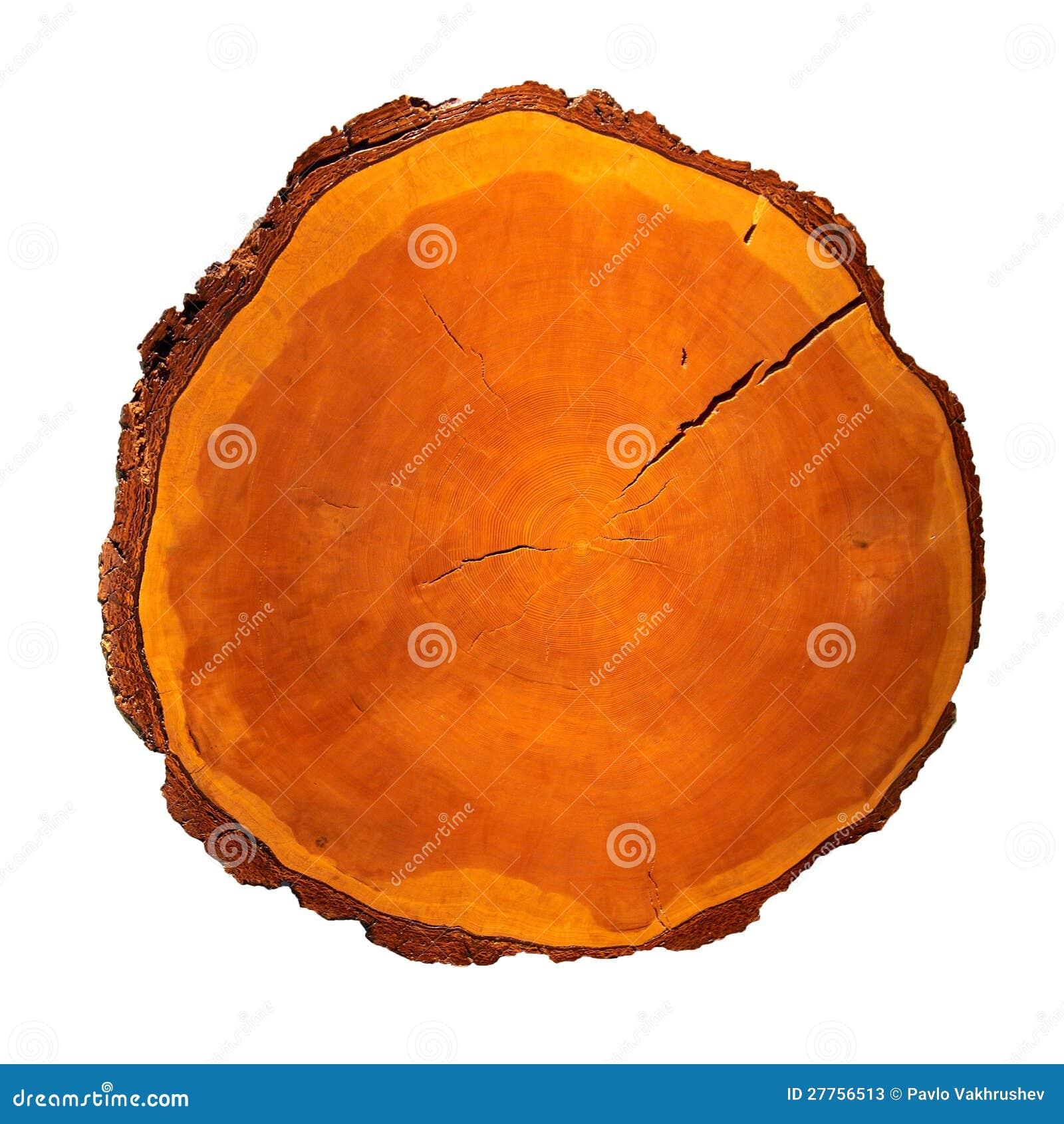 Tronçon en bois