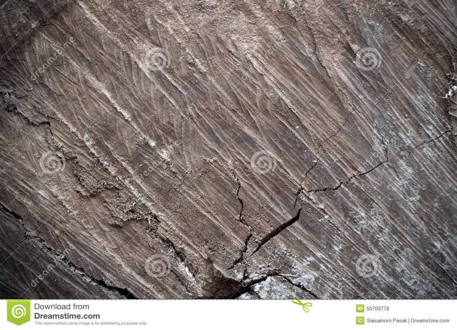 Tronc d 39 arbre en bois de coupe de texture photo stock image 50700778 - Tronc d arbre coupe ...