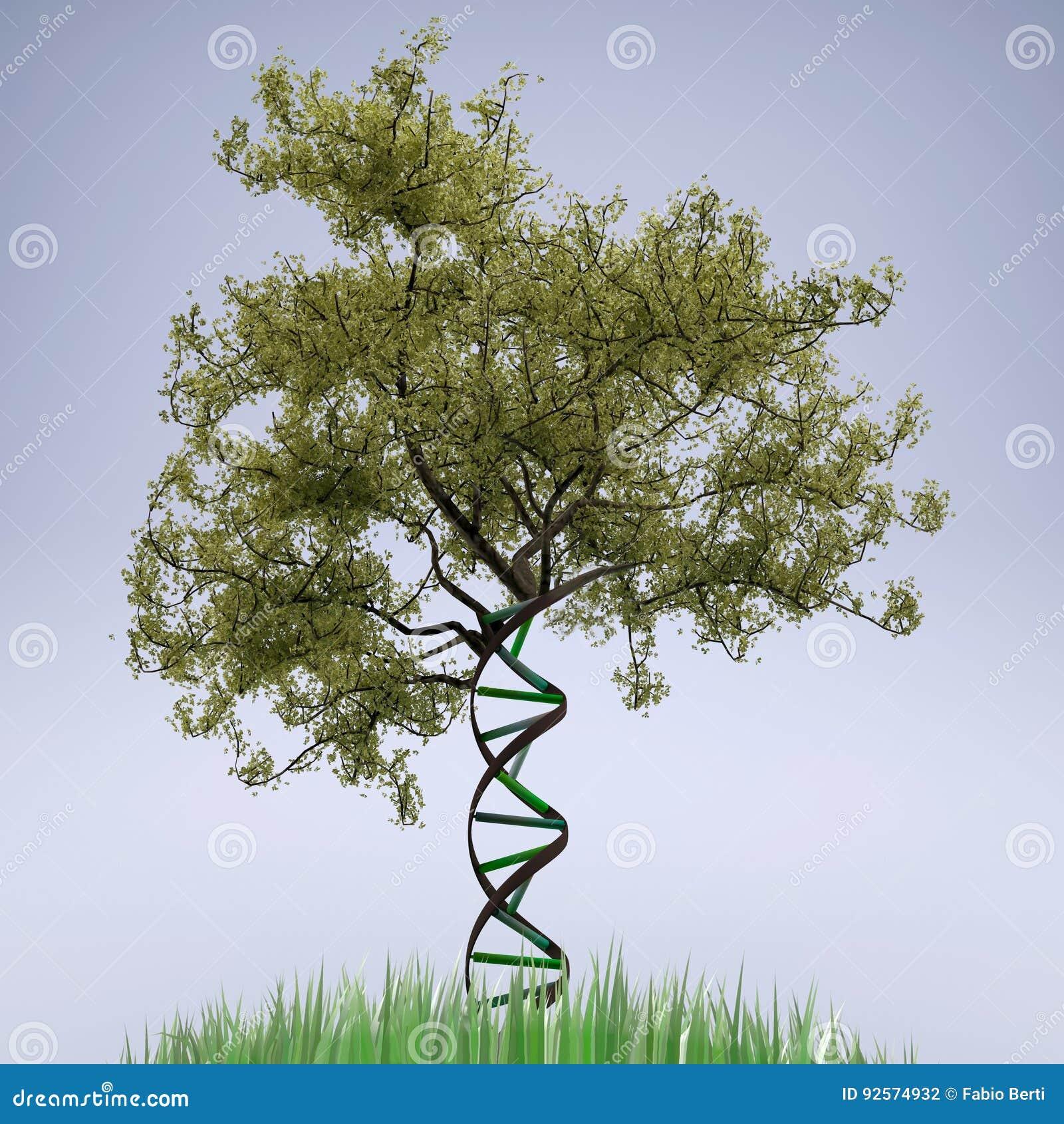 Tronco di albero a forma di del DNA