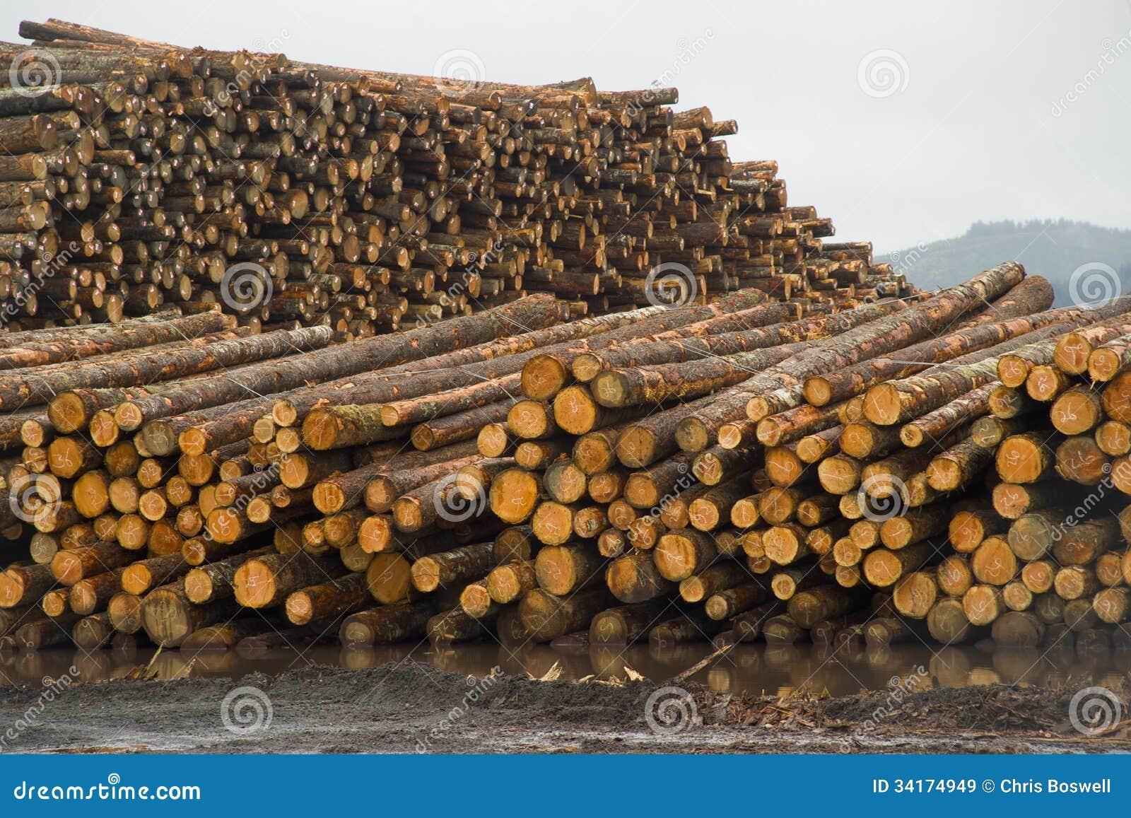 Troncs d 39 arbre en bois de pile de rondin de moulin de bois for Traitement bois de charpente