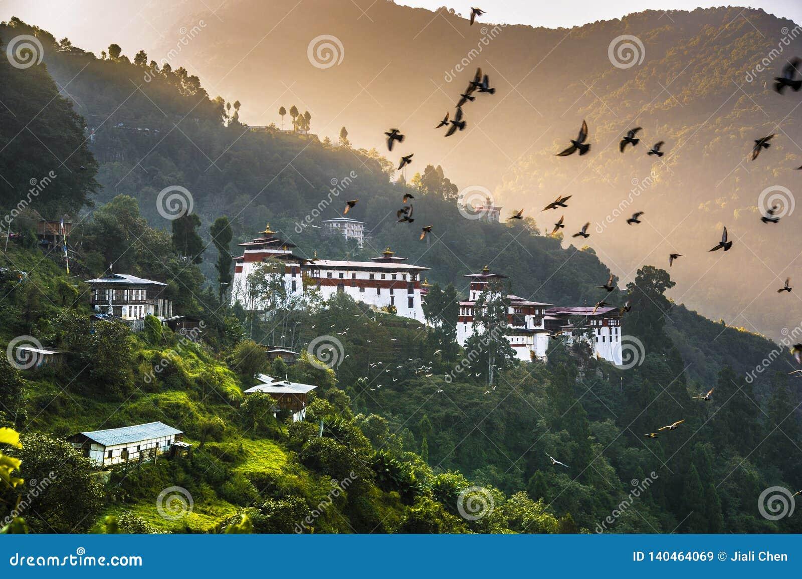 dating bhutan