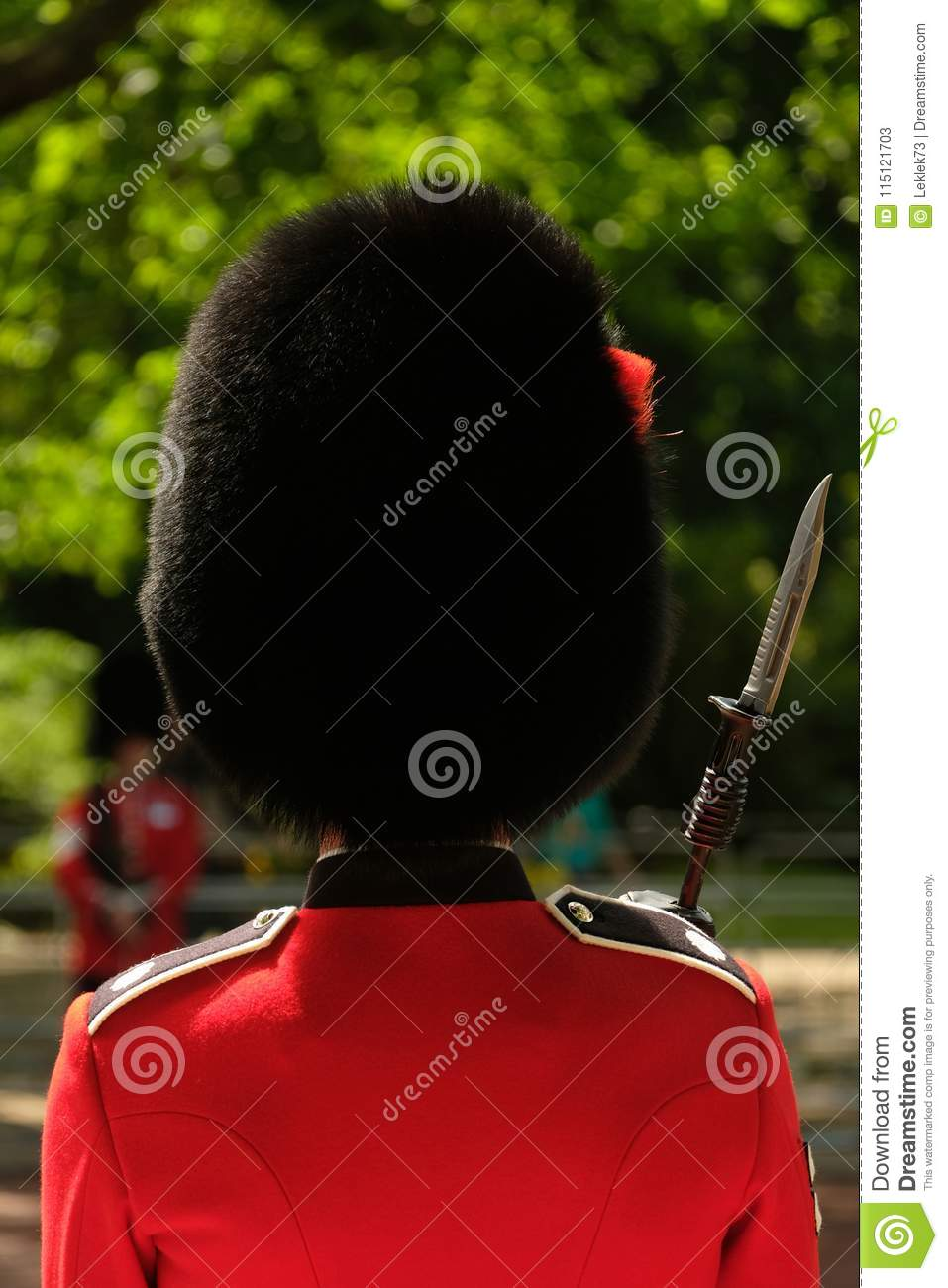 Trooping The Colour Ceremony, London UK  Soldier In Busby
