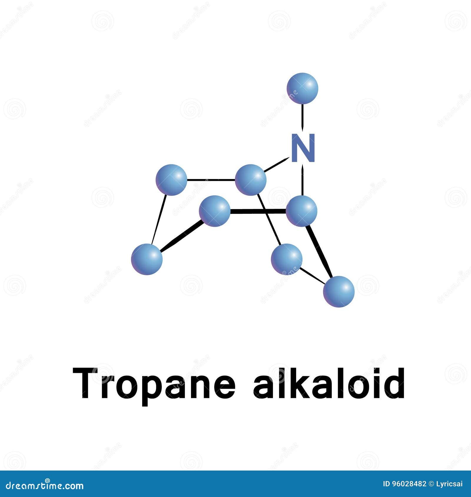 Tropane bicyclic alkaloid