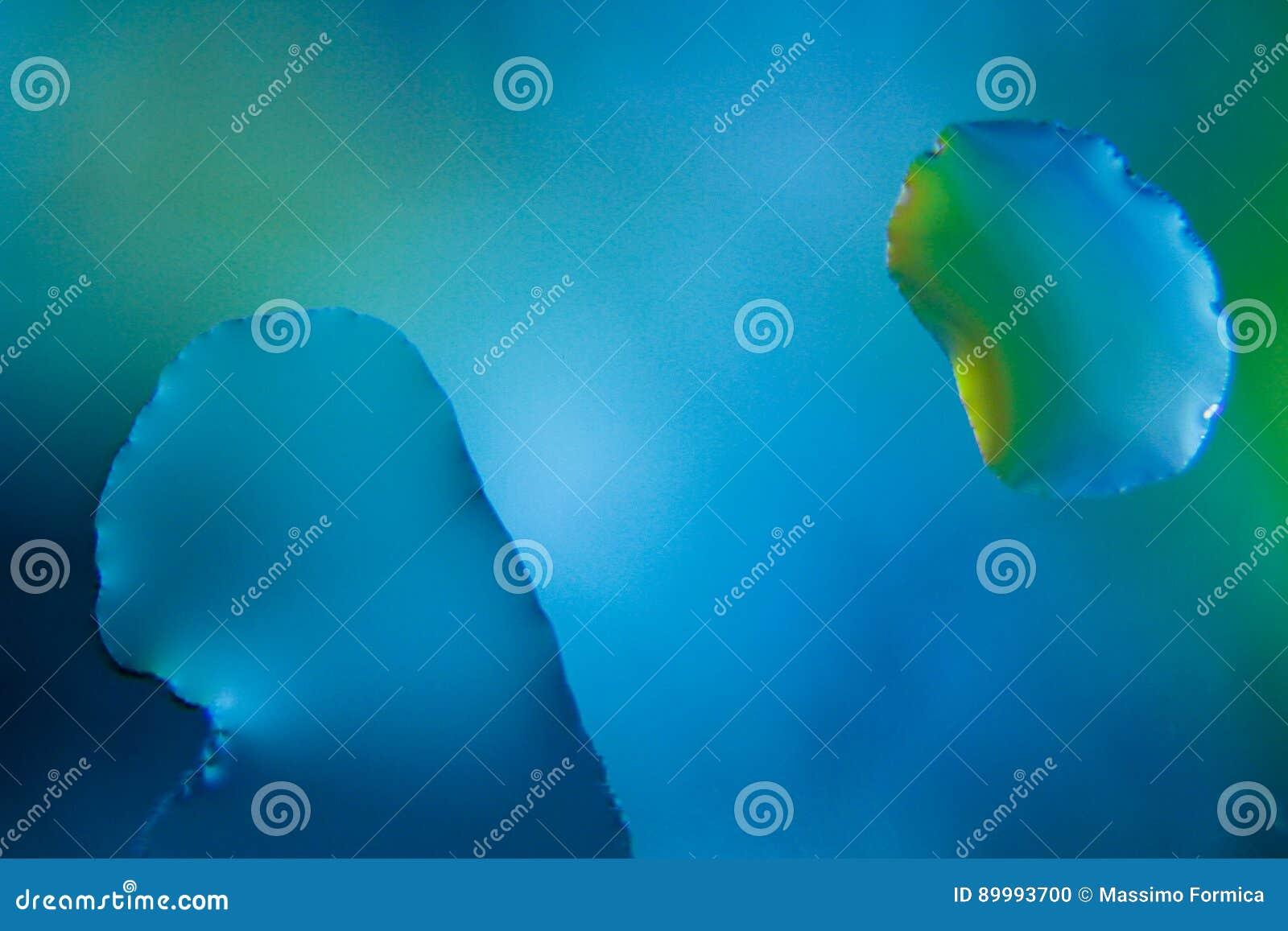 Tropfen des blauen Wassers - Makro