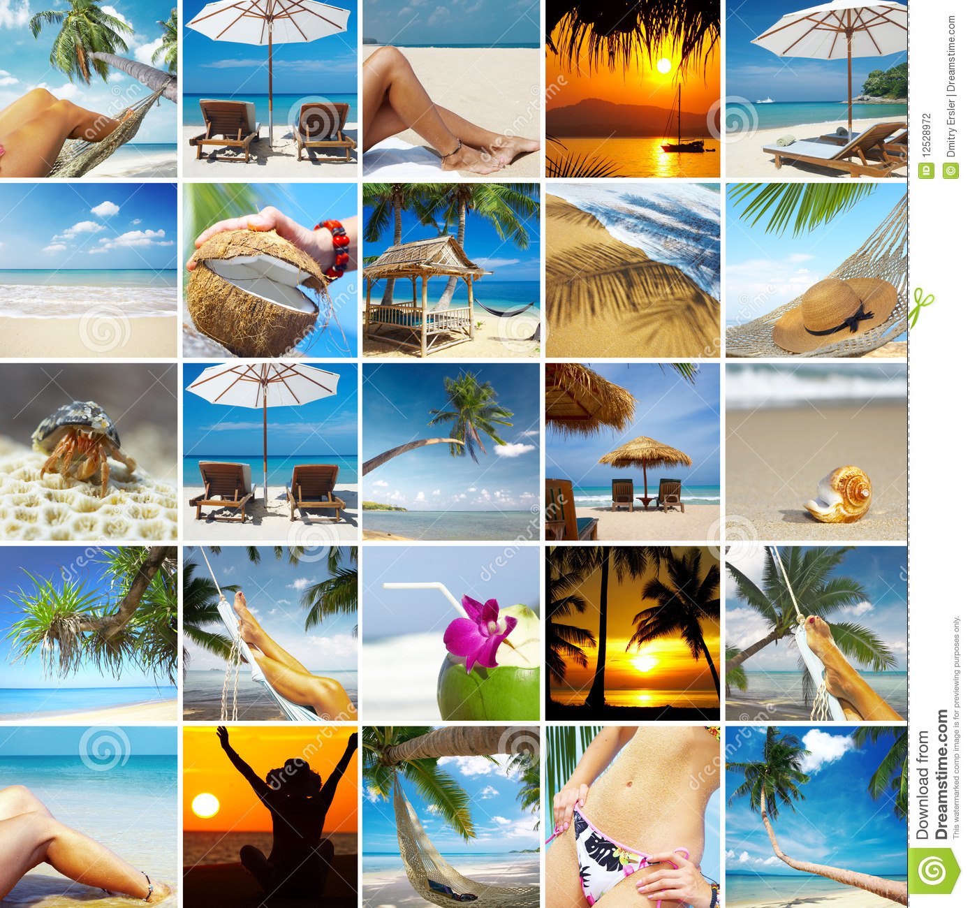 Tropic collage