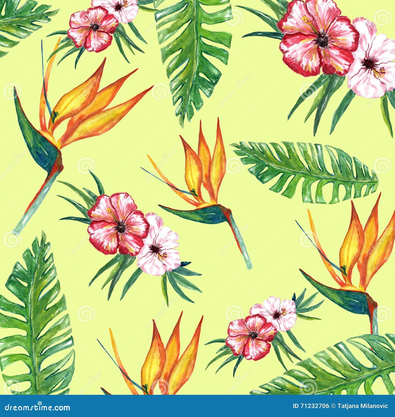 Tropic Flower Digital Paper Stock Illustration - Illustration of ...
