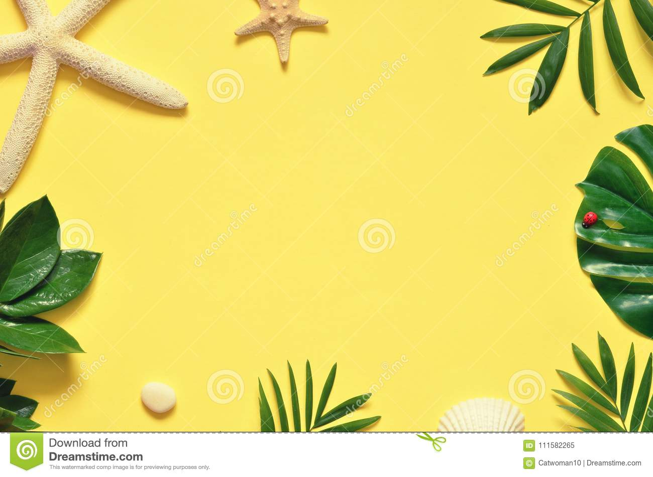 tropical background palm trees branches with starfish and seashell