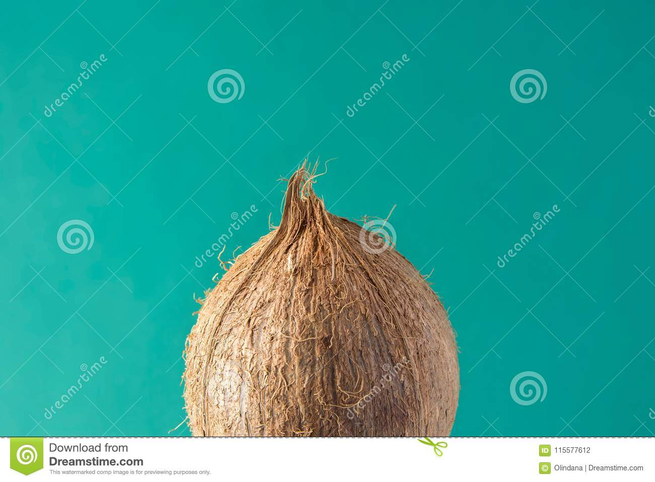 Tropical Background Ripe Coconut on Green Backdrop. Healthy Food Lifestyle Vitamins Summer Travel Vacation Concept
