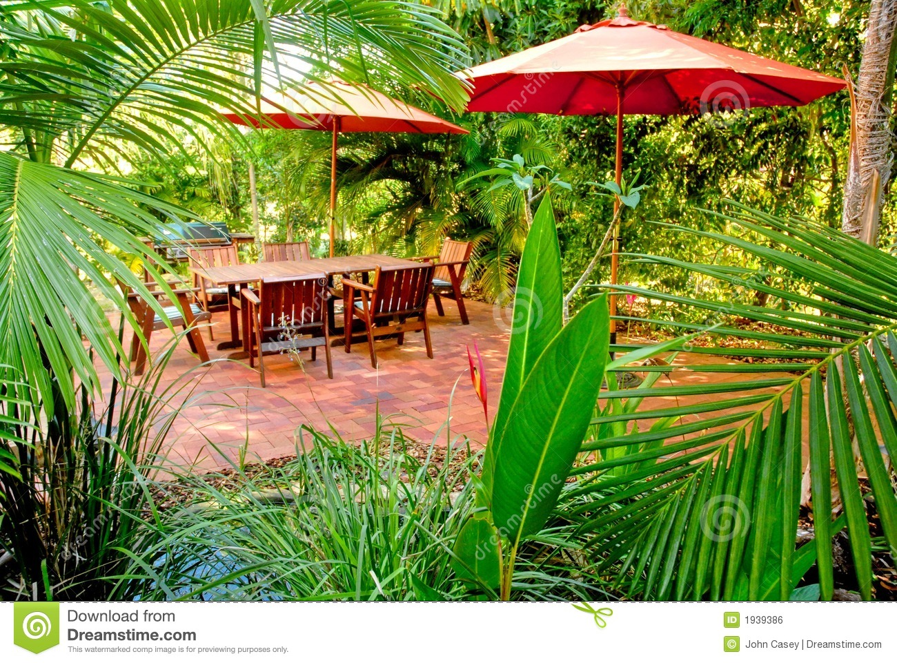 Backyard Jungle Tropical Landscapes : backyard tropical garden provides the ideal place for outdoor living