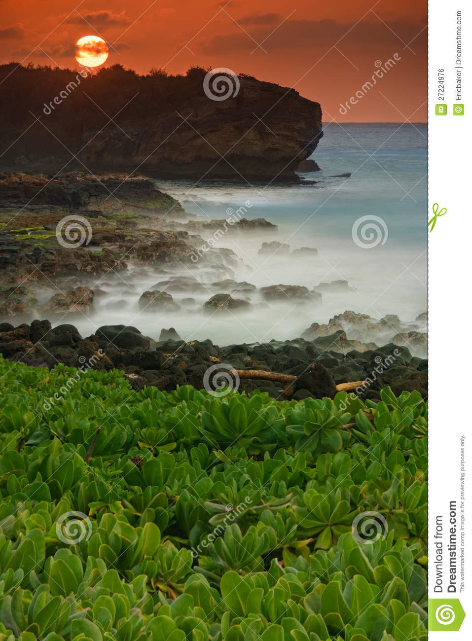 Download Tropical Beach stock photo. Image of coast, hawaii, sunset - 27224976