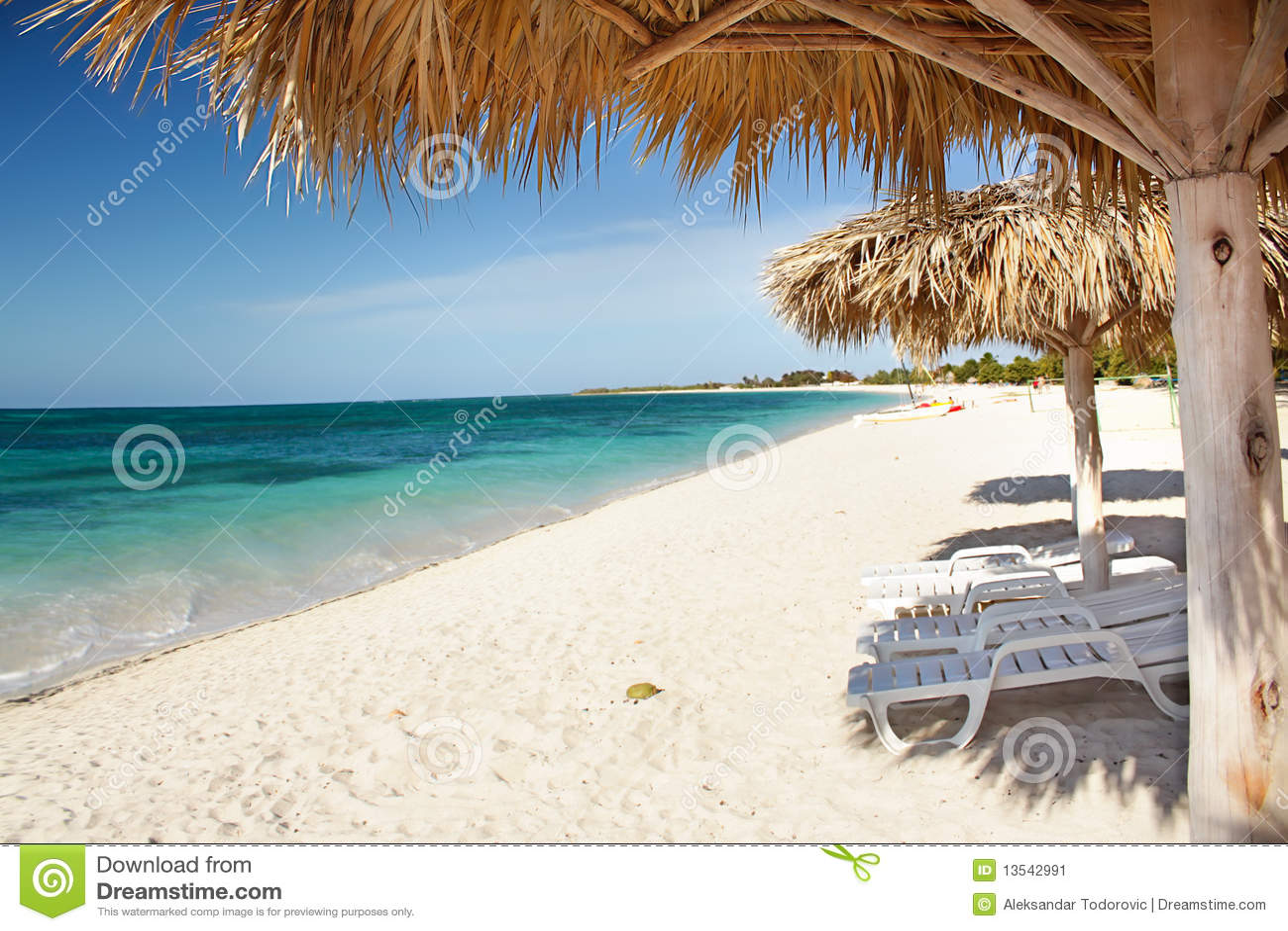 Beach purenudism The Guardian: