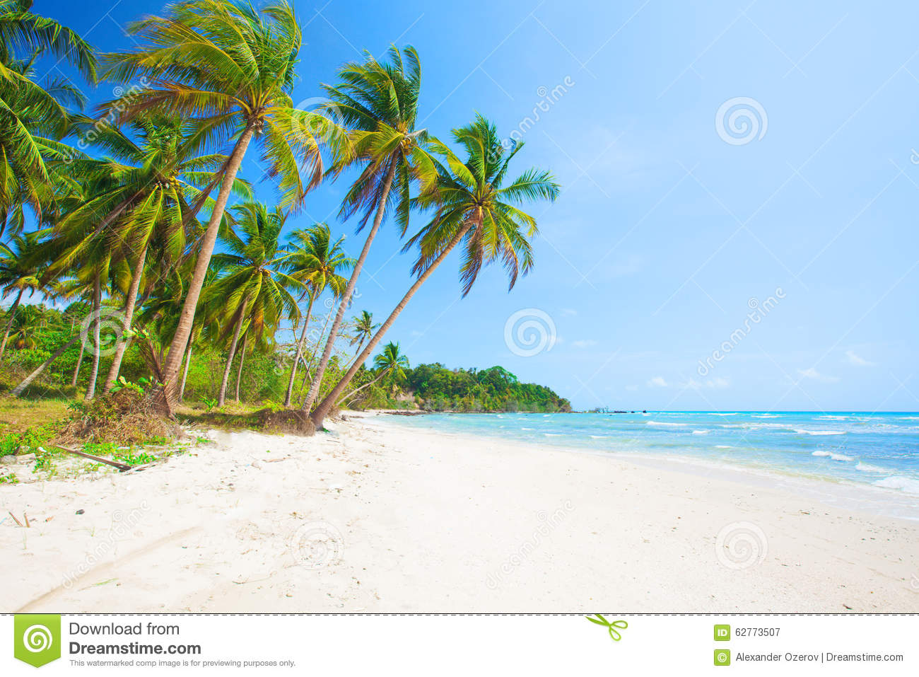 Romantic Pictures Of Tropical Beaches: Tropical Beach With Coconut Palm And Sea Stock Image