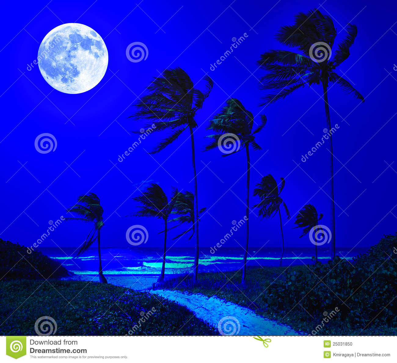 Tropical Beach In Cuba At Night Stock Photo - Image: 25031850