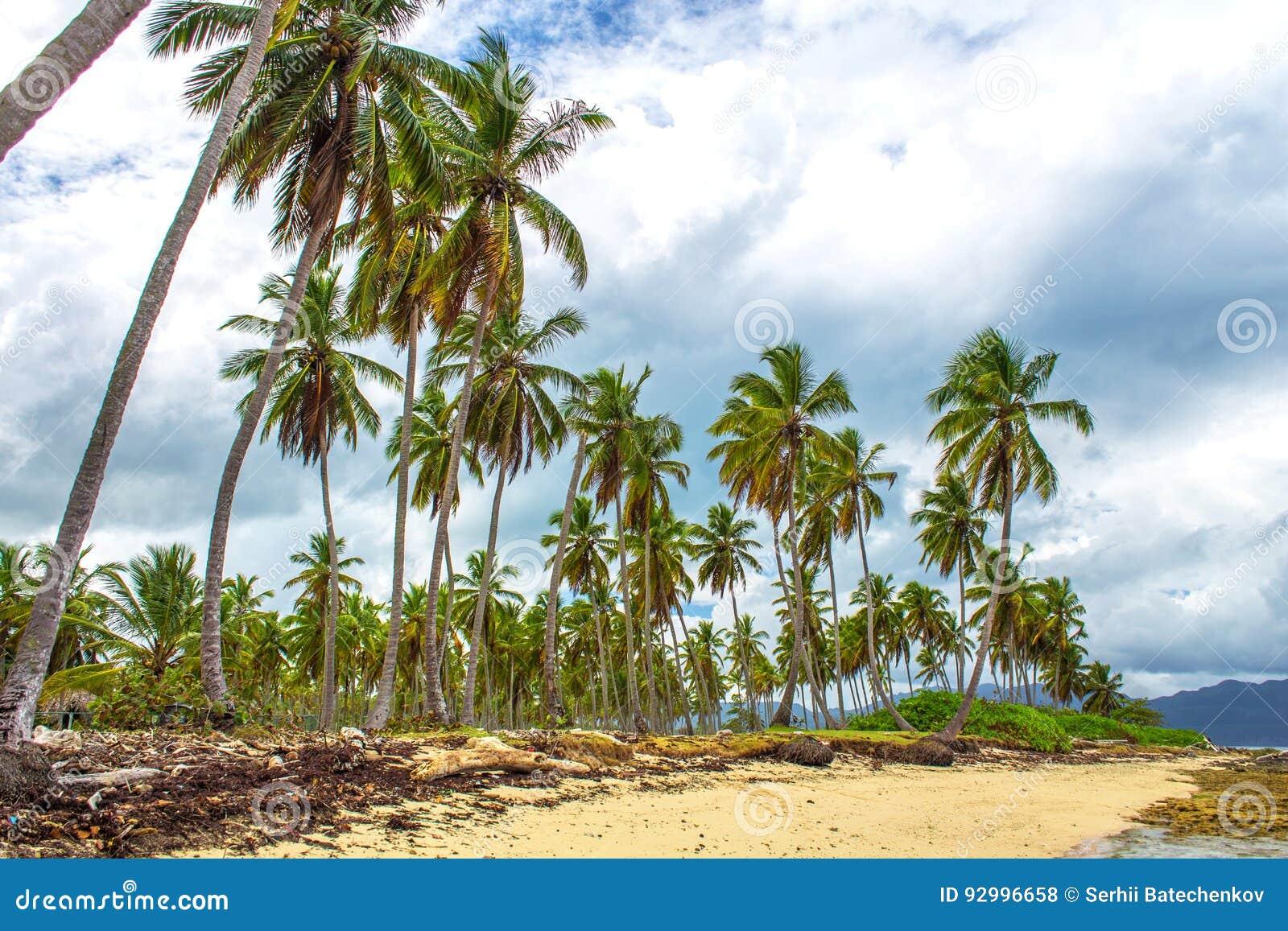 Tropical beach and grey sky