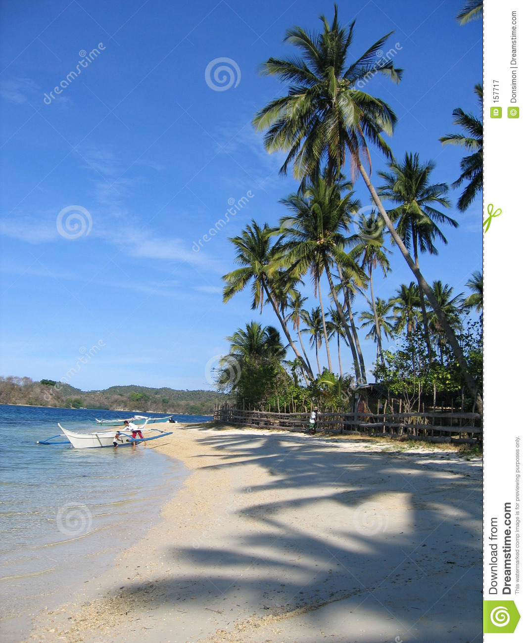 Palm Tree Beach: Tropical Beach Palm Trees Philippines Royalty Free Stock