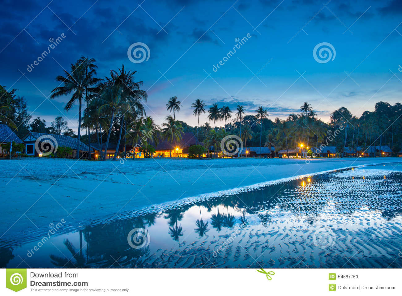 Tropical Beach With Palm Trees And Resort Lights At Night