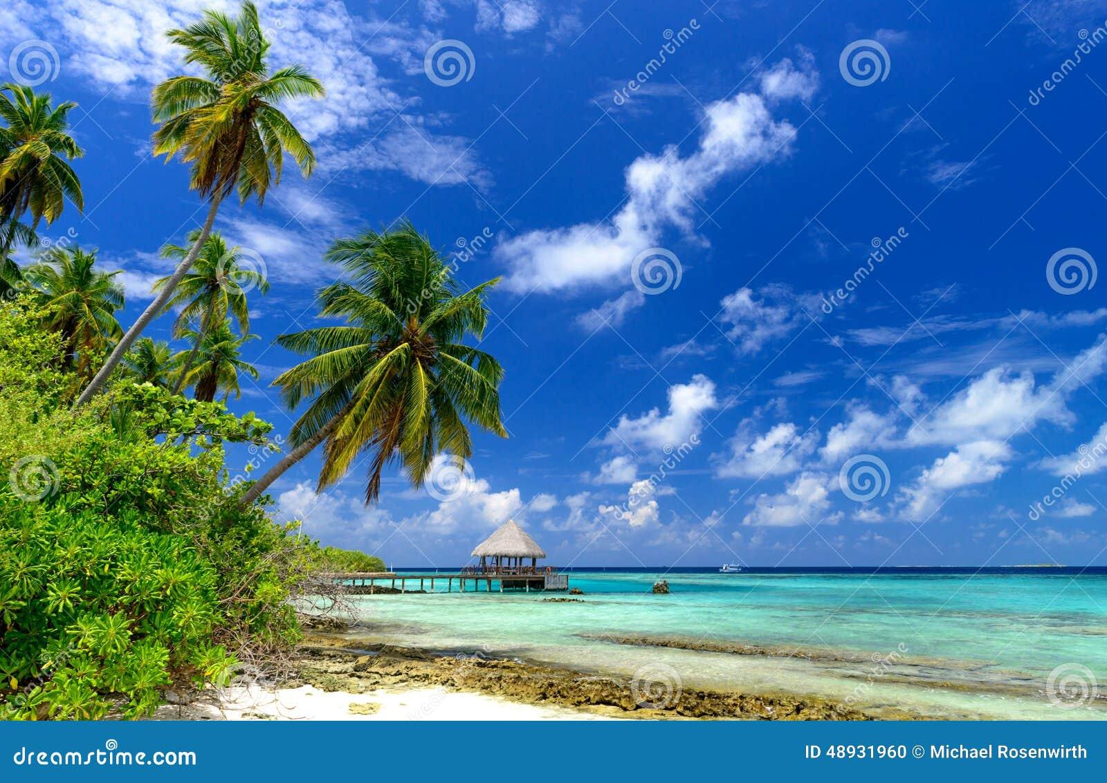 Tropical Island Beach Scenery: Tropical Beach Scenery Stock Photo