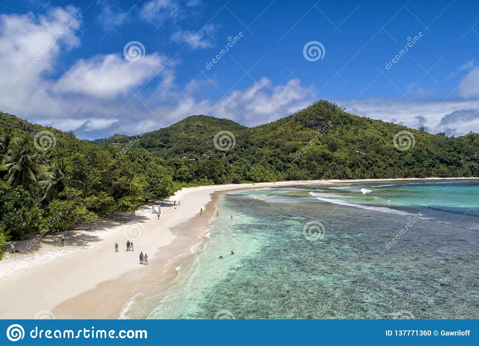 Tropical beach with sea and palm taken from drone. Beach and sea photo. Romantic beach aerial view