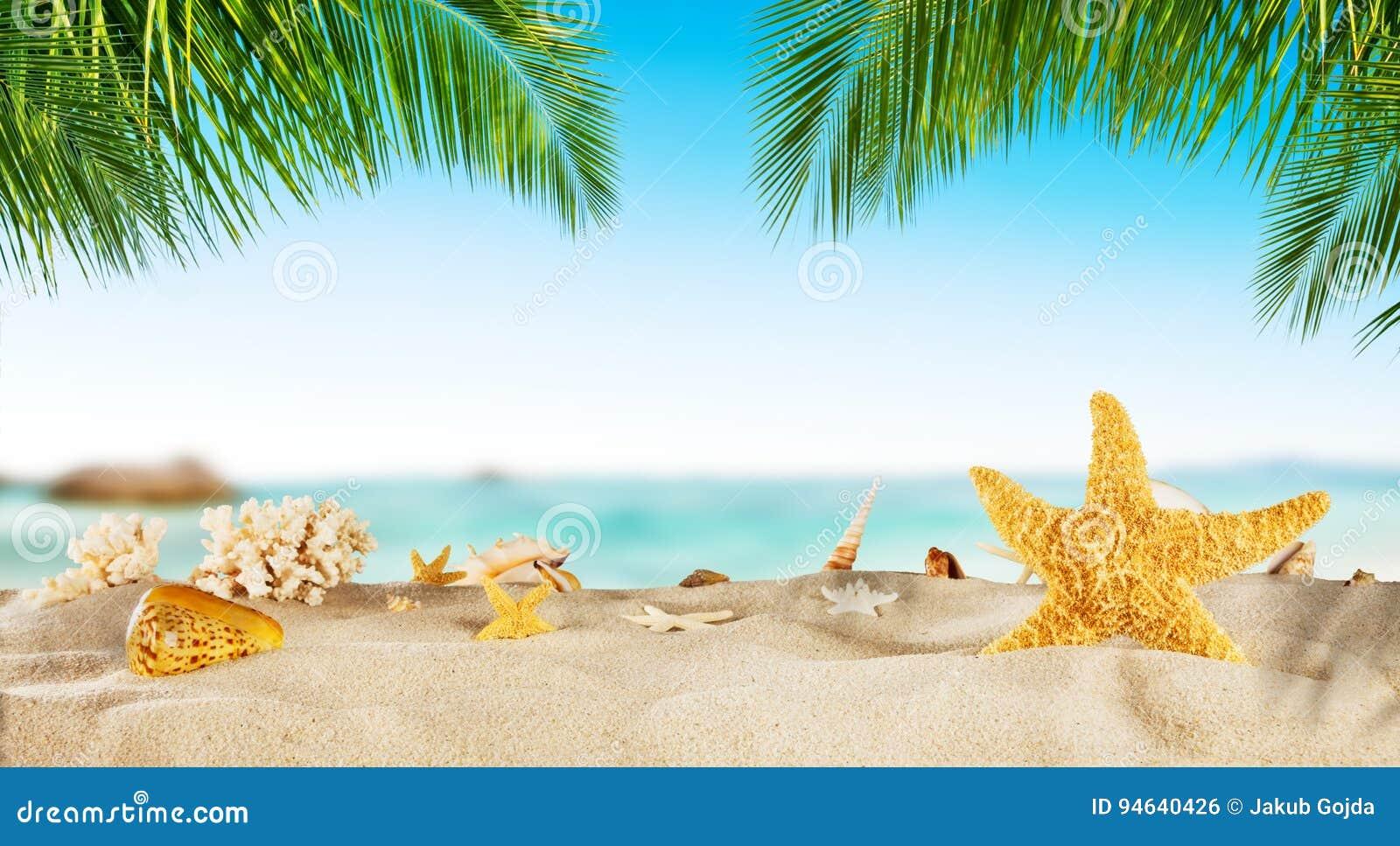 fc93297881409 Tropical Beach With Sea Star On Sand