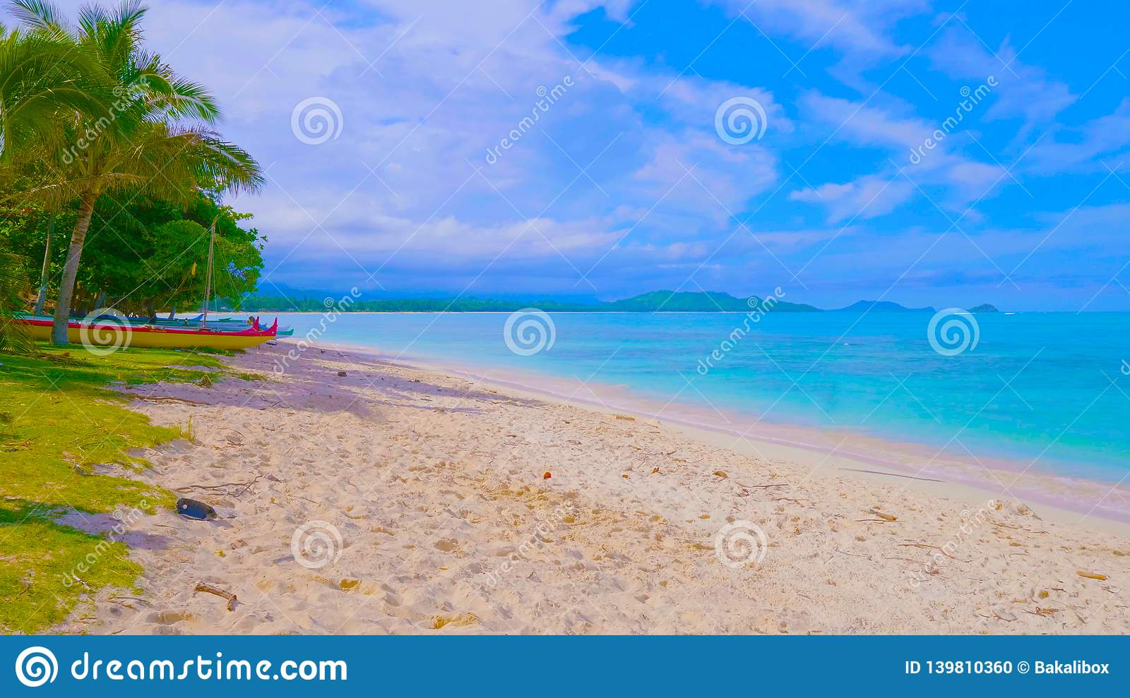 Tropical beach and sea.View of nice tropical beach with palms around. Holiday and vacation concept. Tropical beach. Beautiful trop